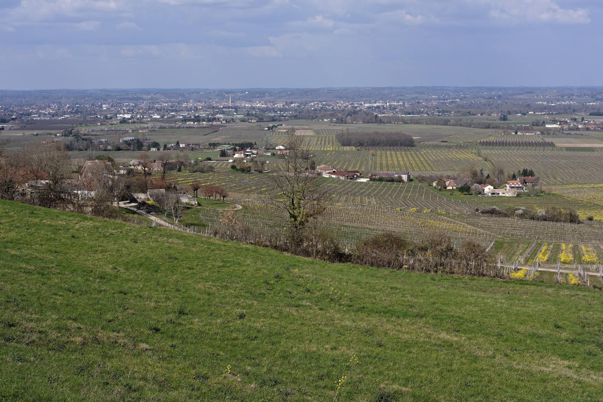 160314-Montbazillac (20)