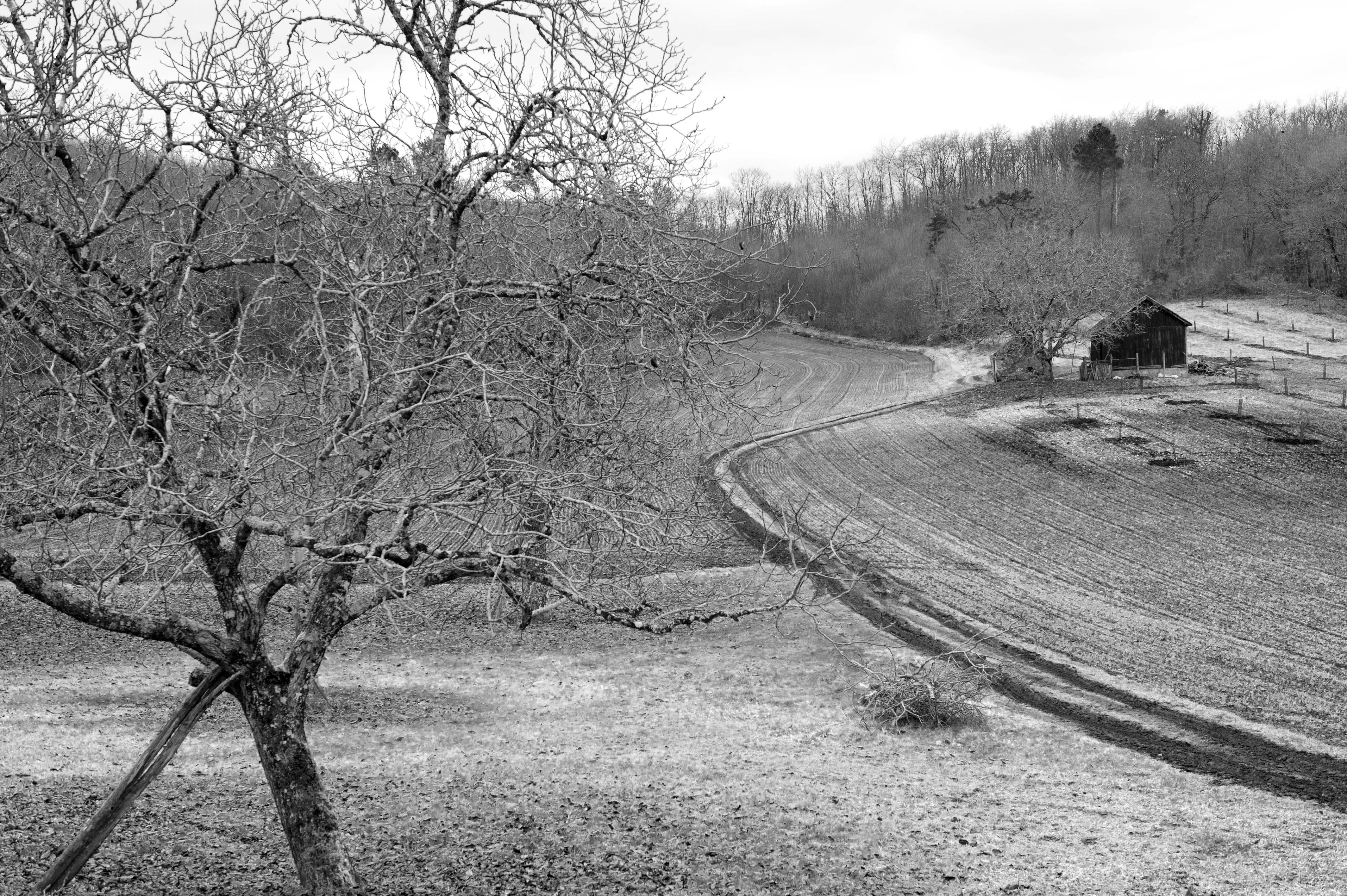 Dordogne - Moncrabou
