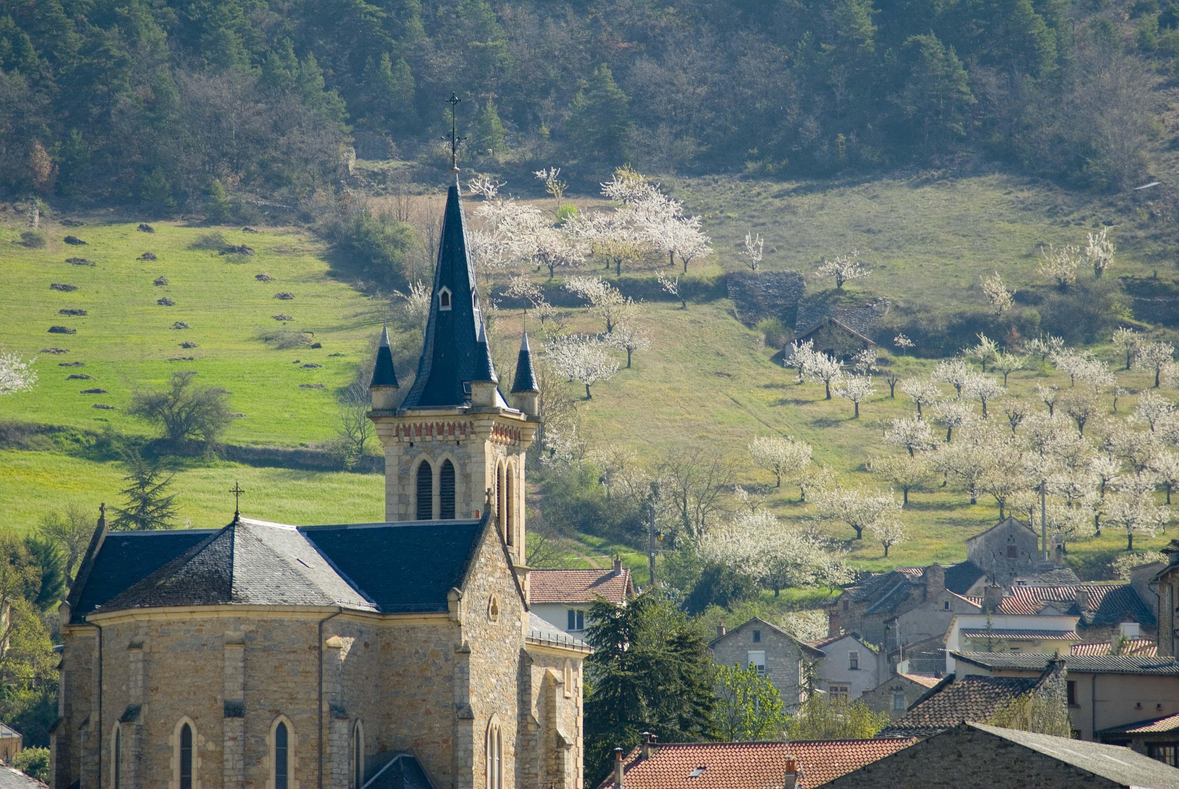 _JF12630-Gorges du Tarn