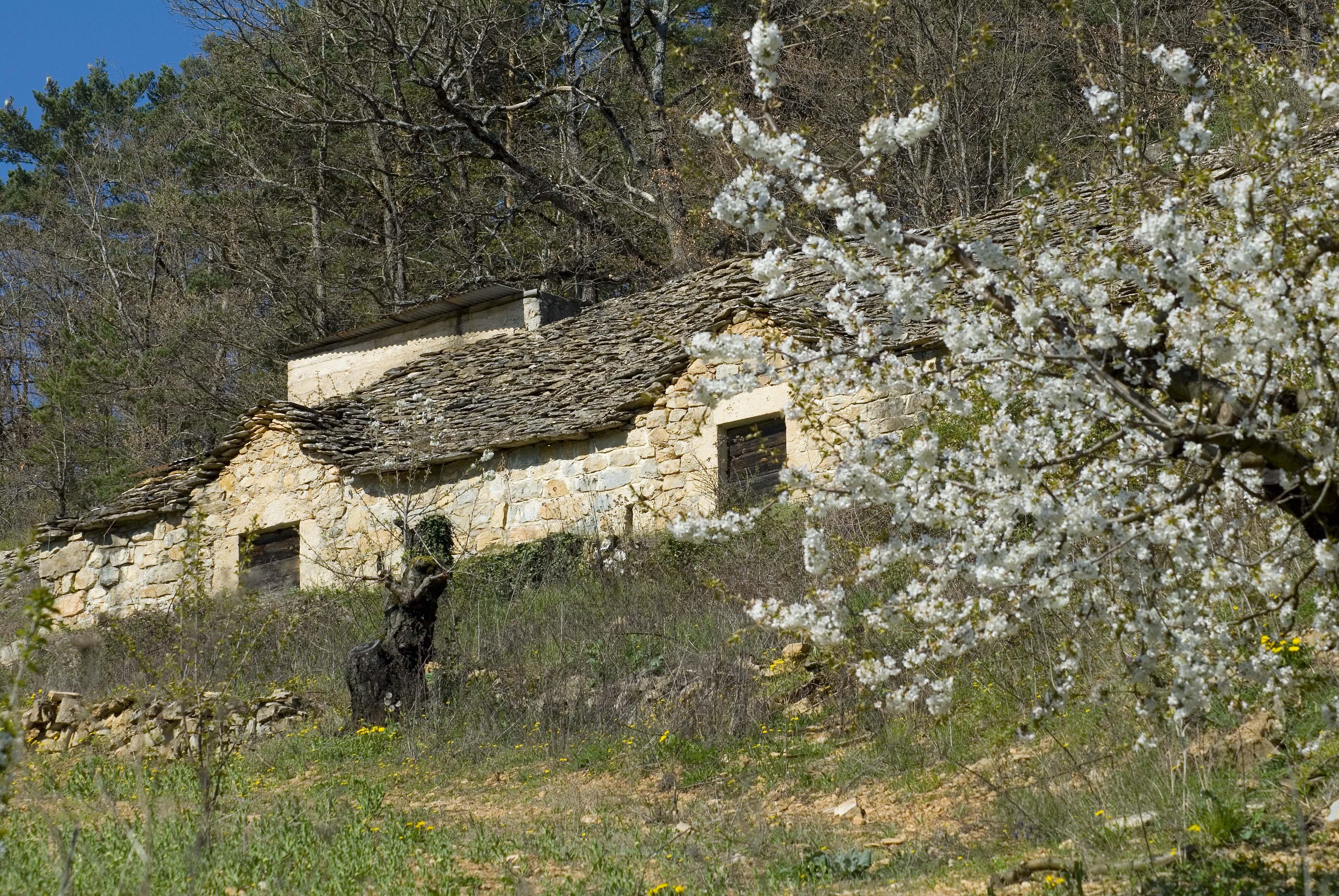 _JF12635-Gorges du Tarn