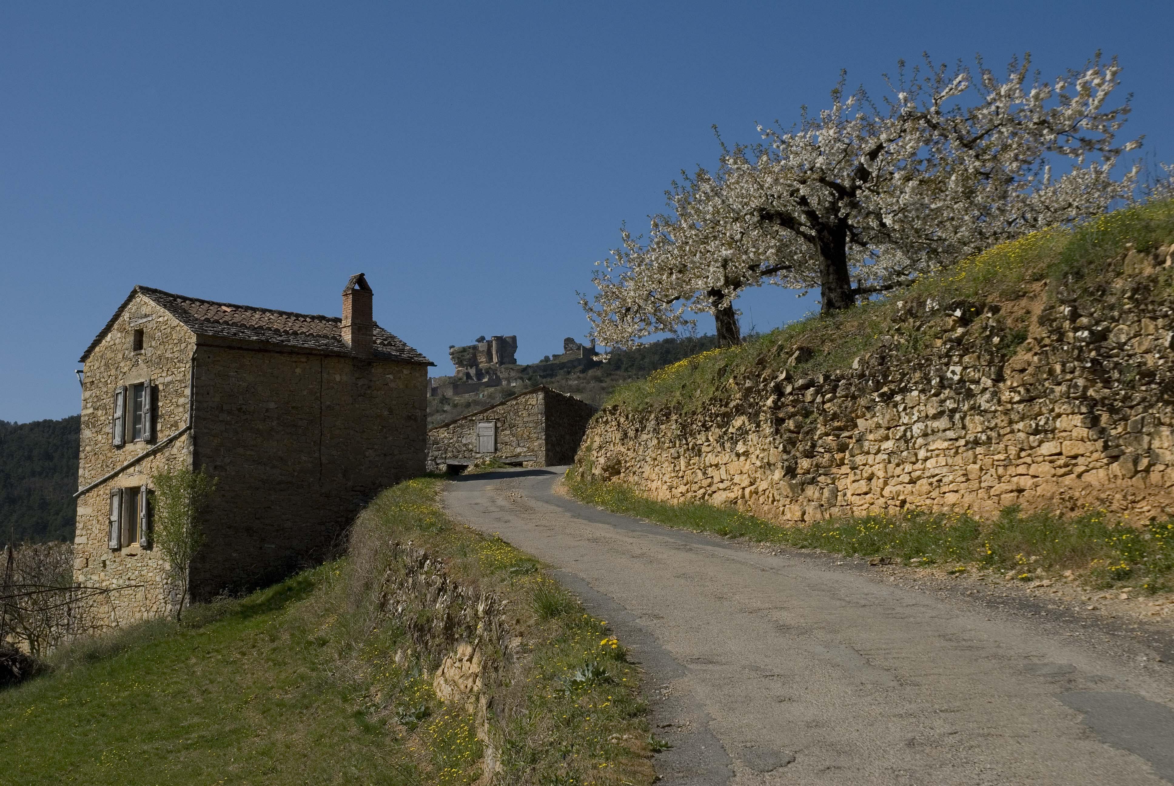 _JF12646-Gorges du Tarn