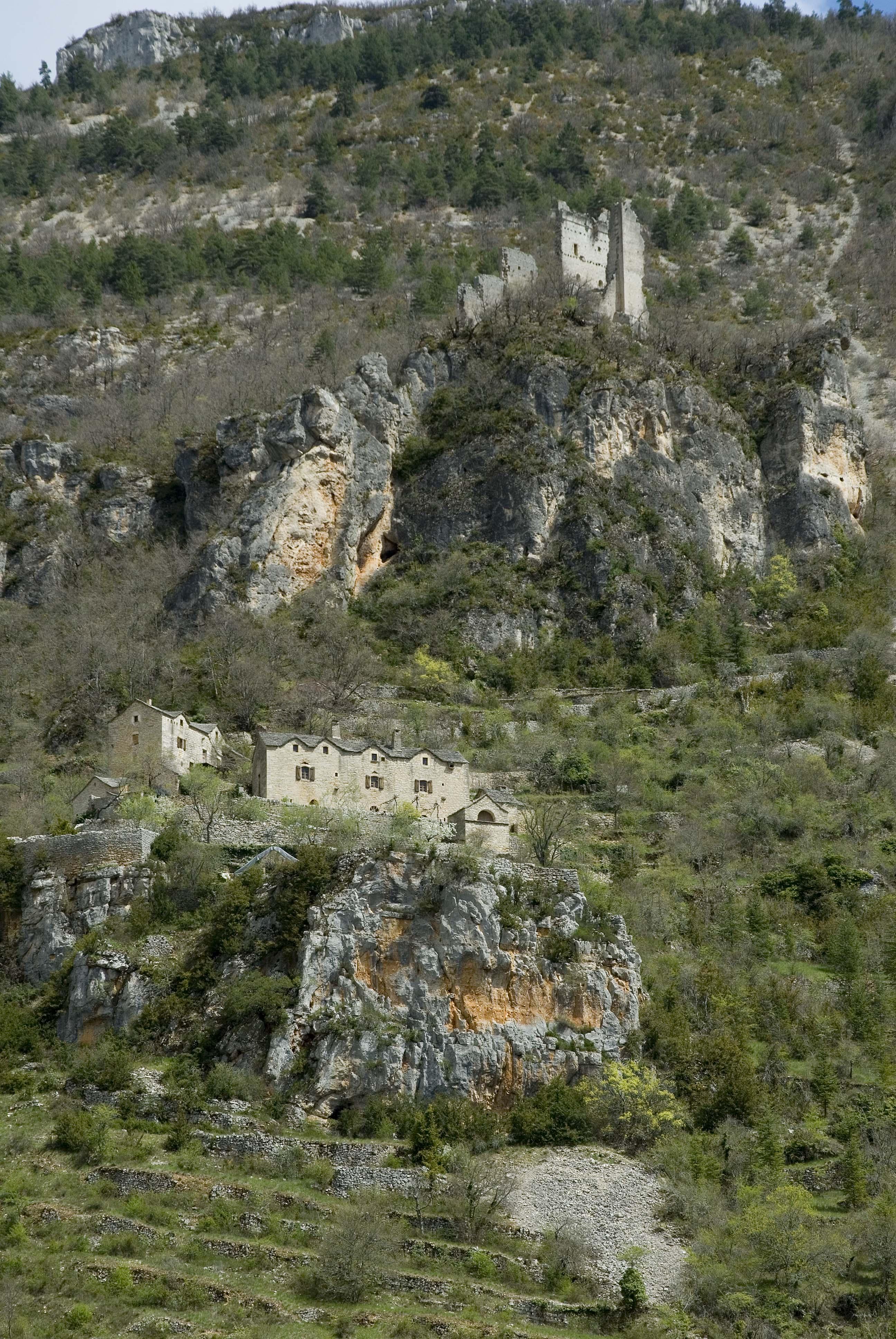 _JF12684-Gorges du Tarn-Hauterive