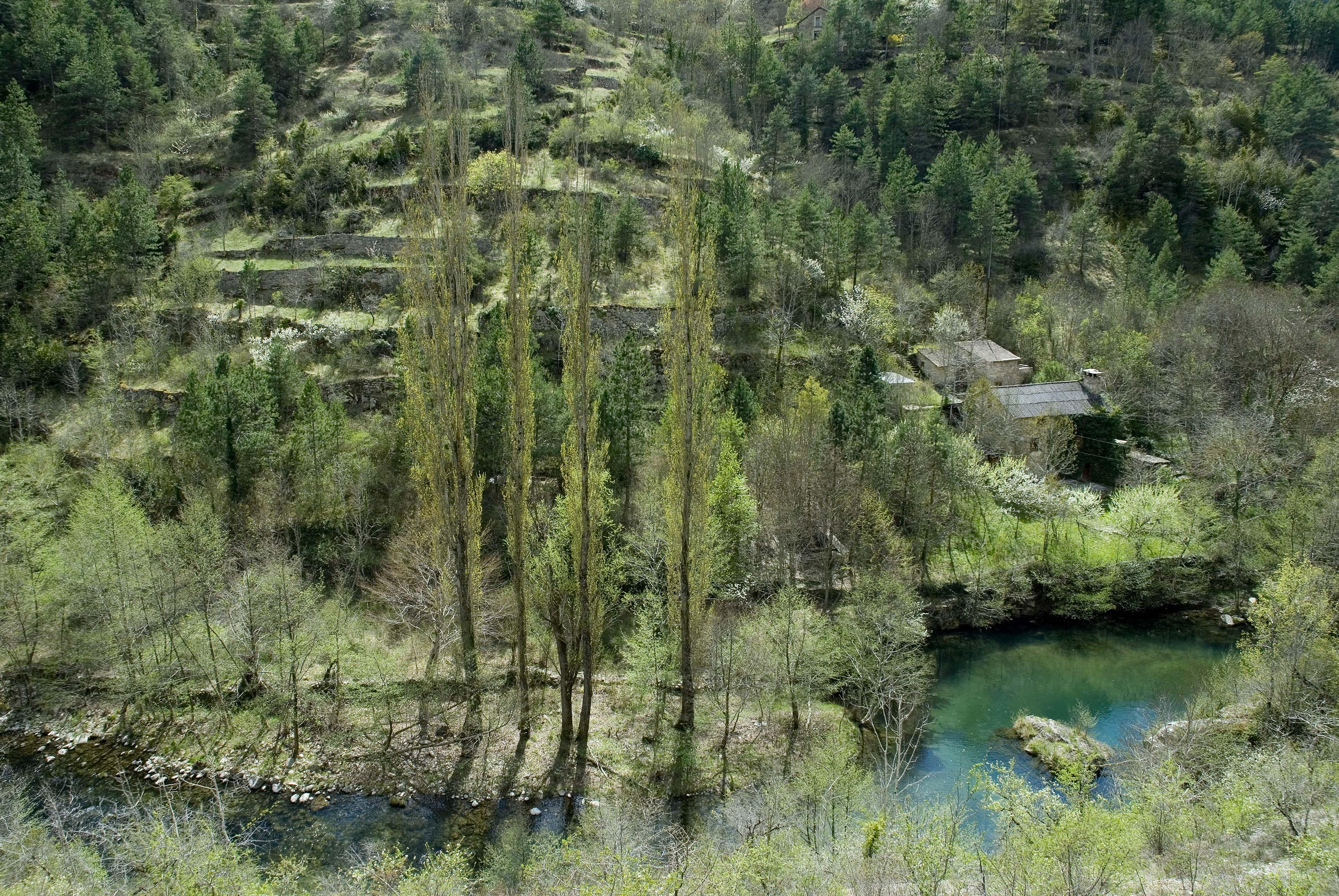_JF12700-Gorges de la Jonte