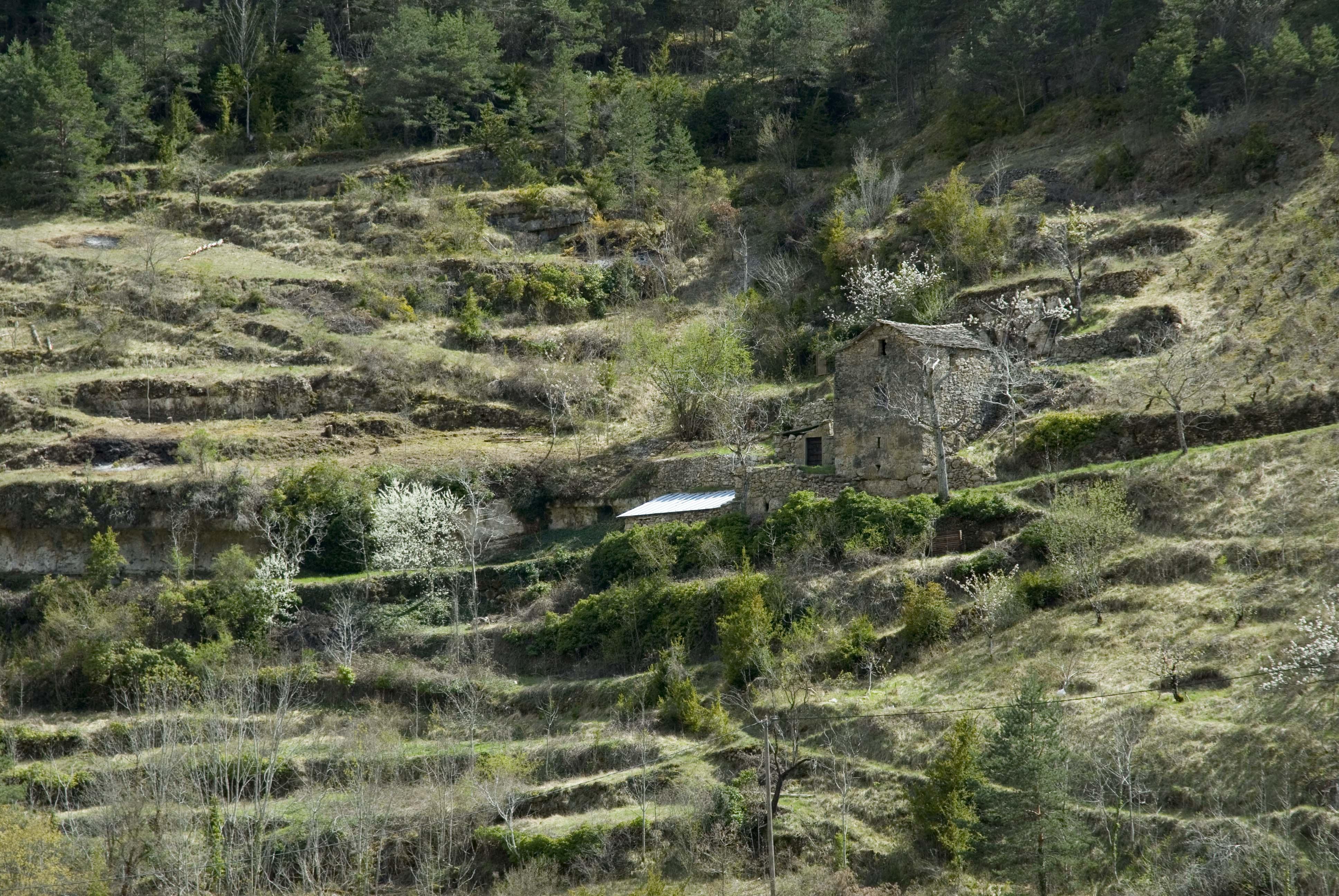 _JF12706-Gorges de la Jonte