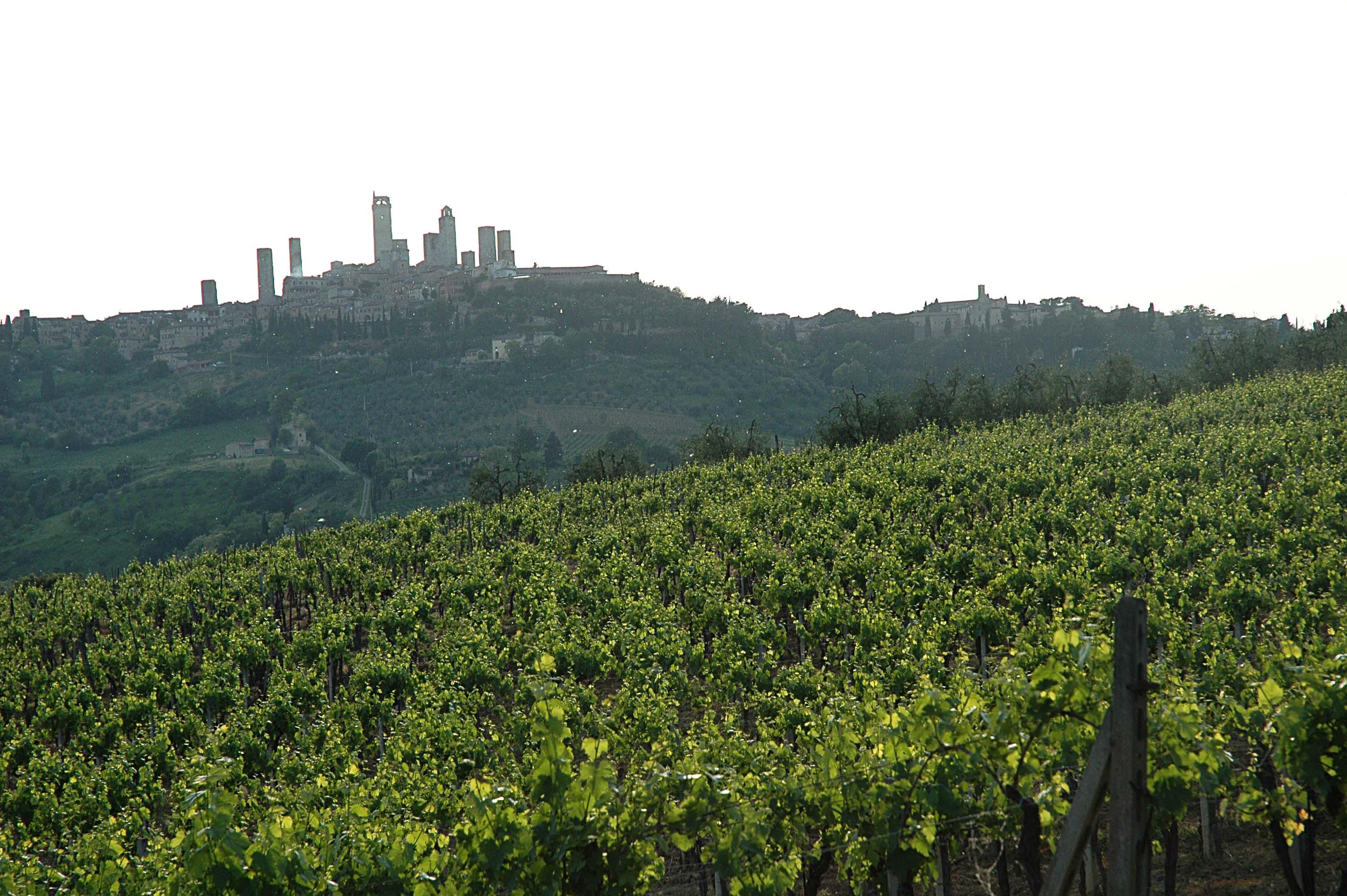 San Geminiano dans les vignes du Chianti