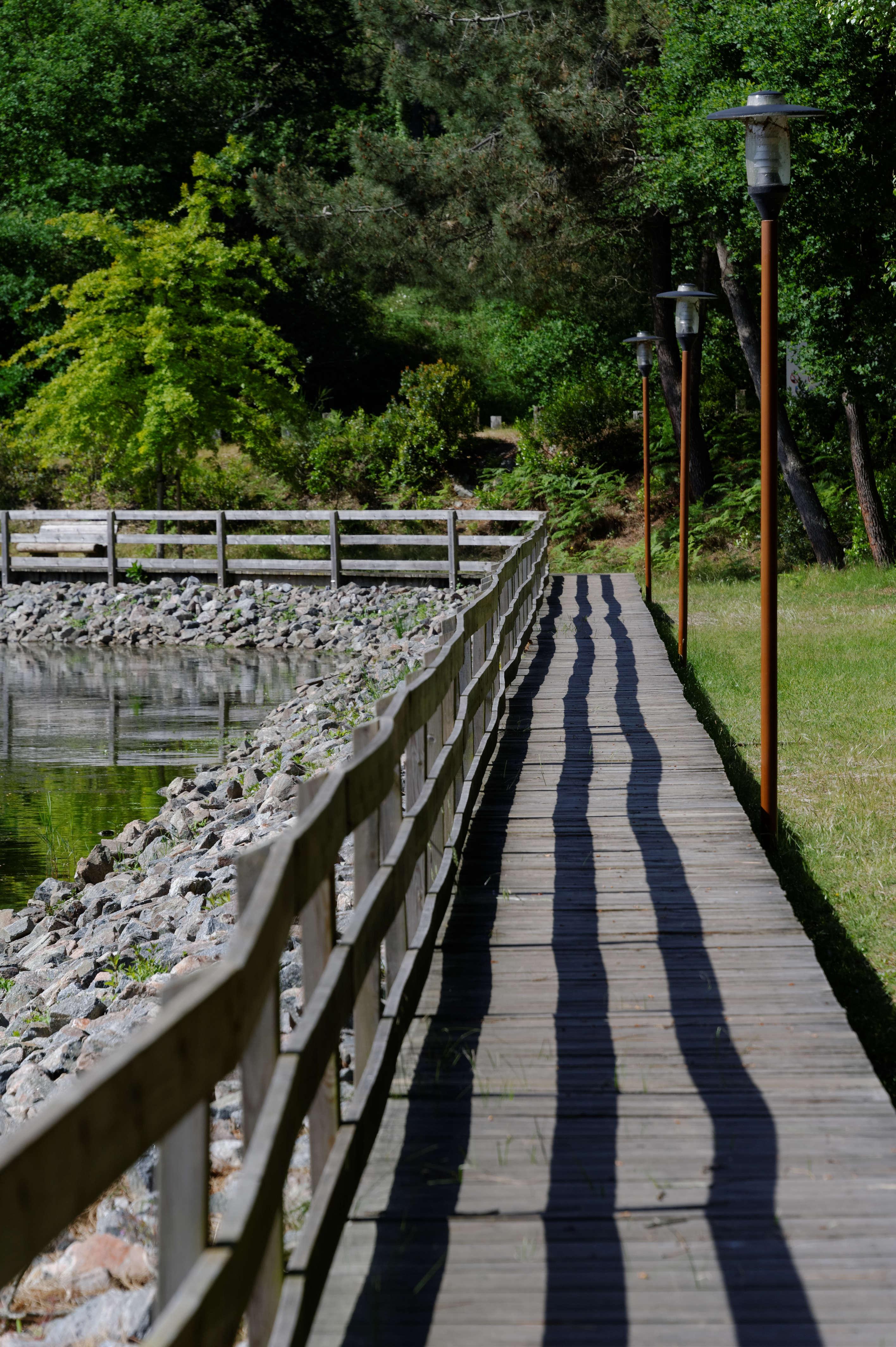 2003_lac  de CAZAUX