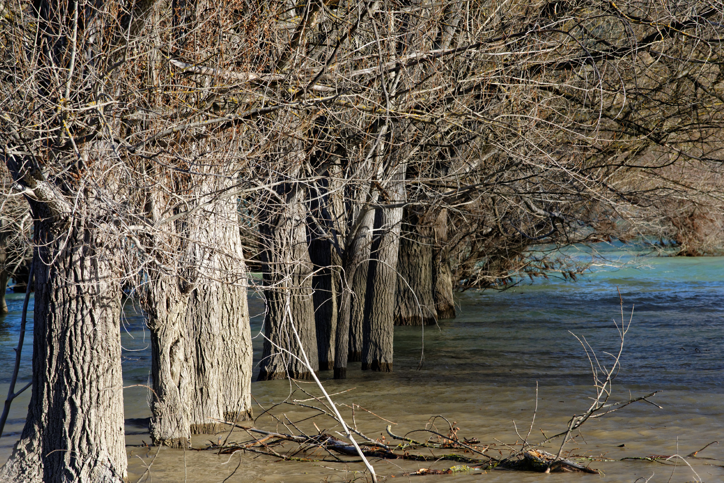 141209-Lac de Mediano (Sobrarbe) (29)