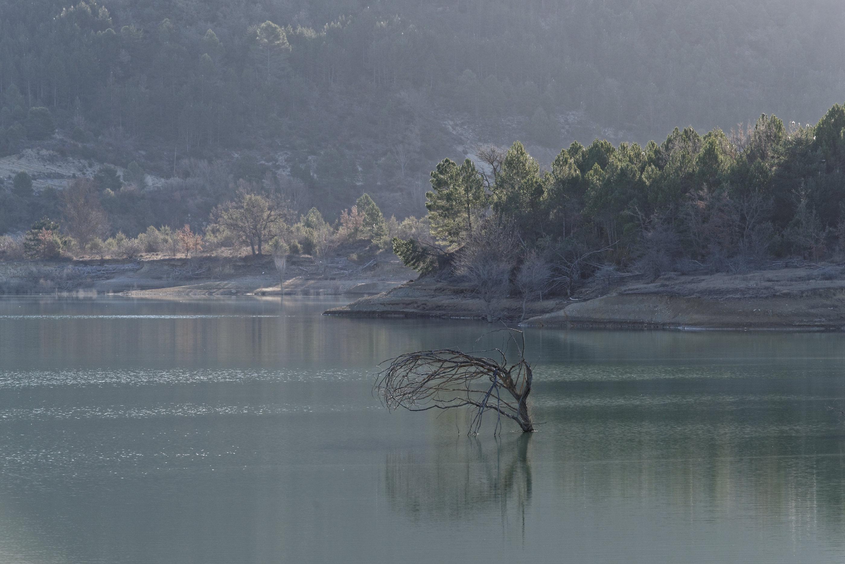150126-Lac Mediano le matin (Sobrarbe) (13)