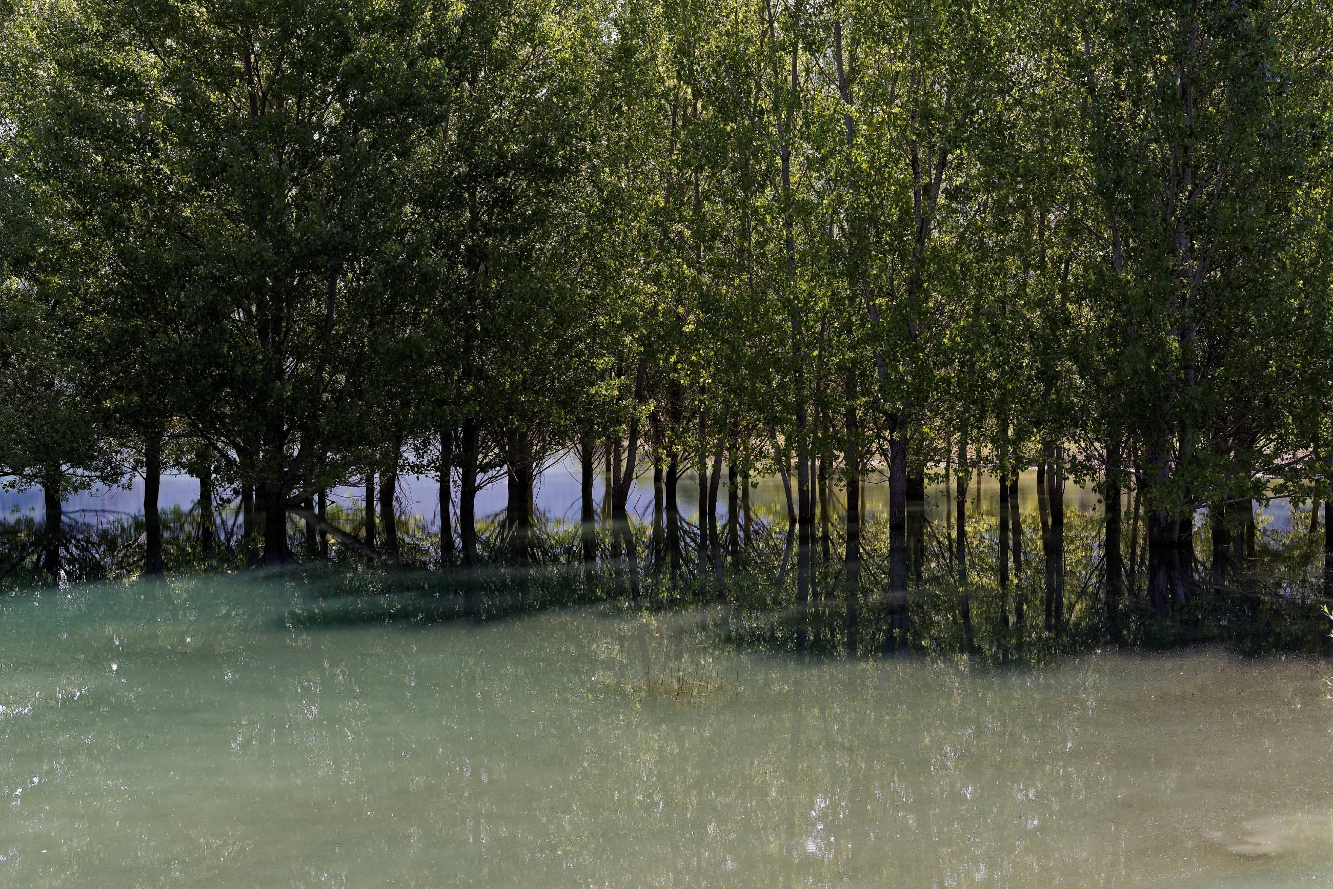 160702-Lac Mediano (Sobrarbe-Aragon) (21)