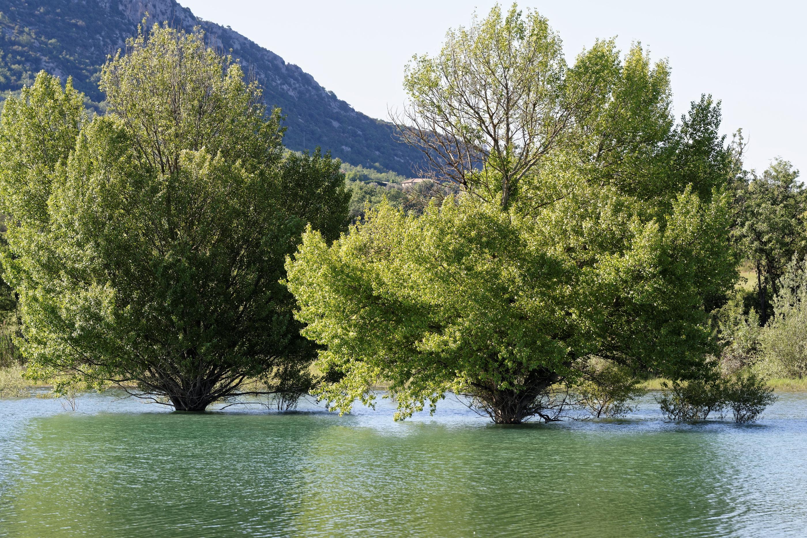 170514-Lac Mediano (Sobrarbe) (101)