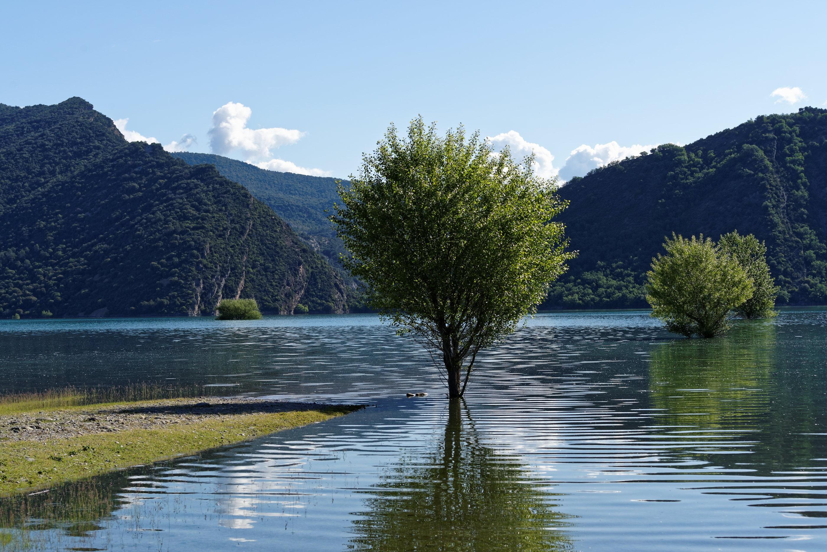 170514-Lac Mediano (Sobrarbe) (108)