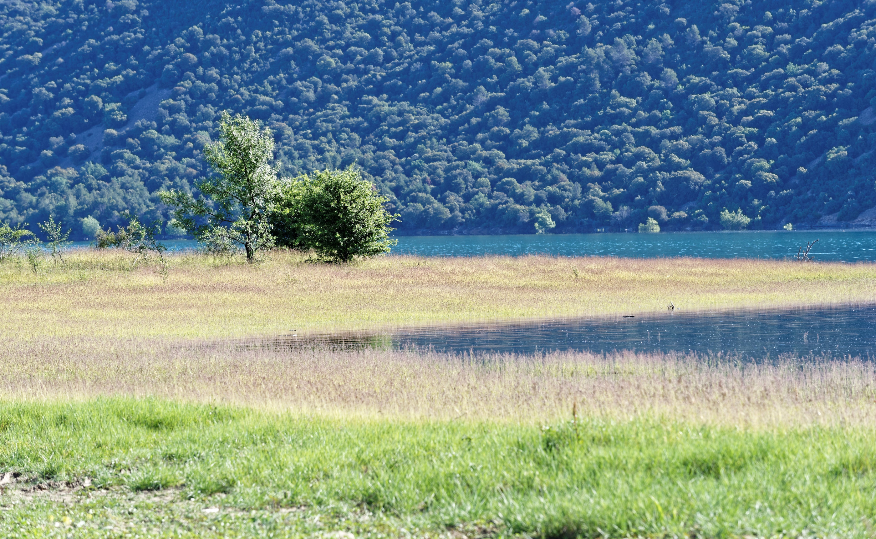 170514-Lac Mediano (Sobrarbe) (116)