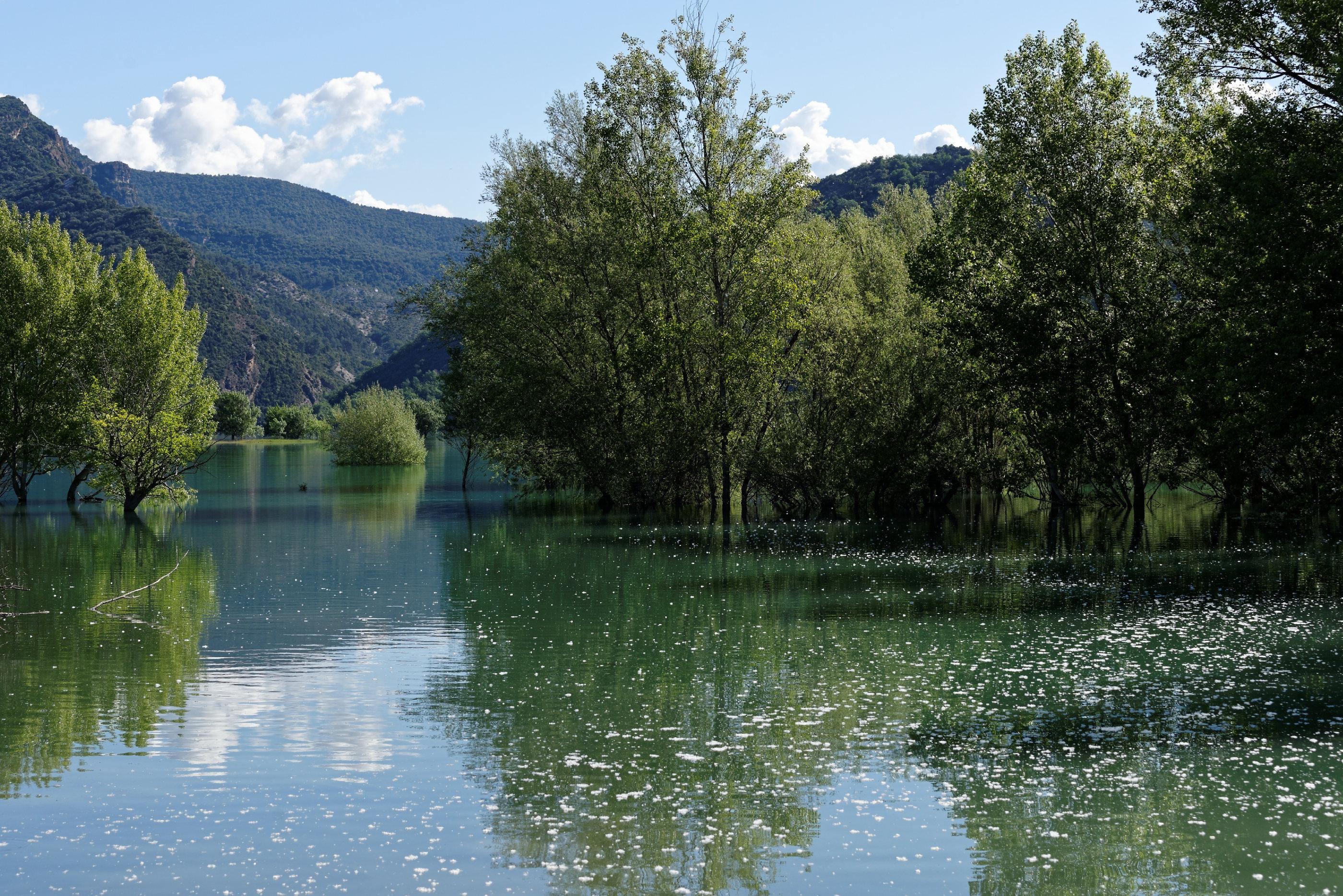 170514-Lac Mediano (Sobrarbe) (120)