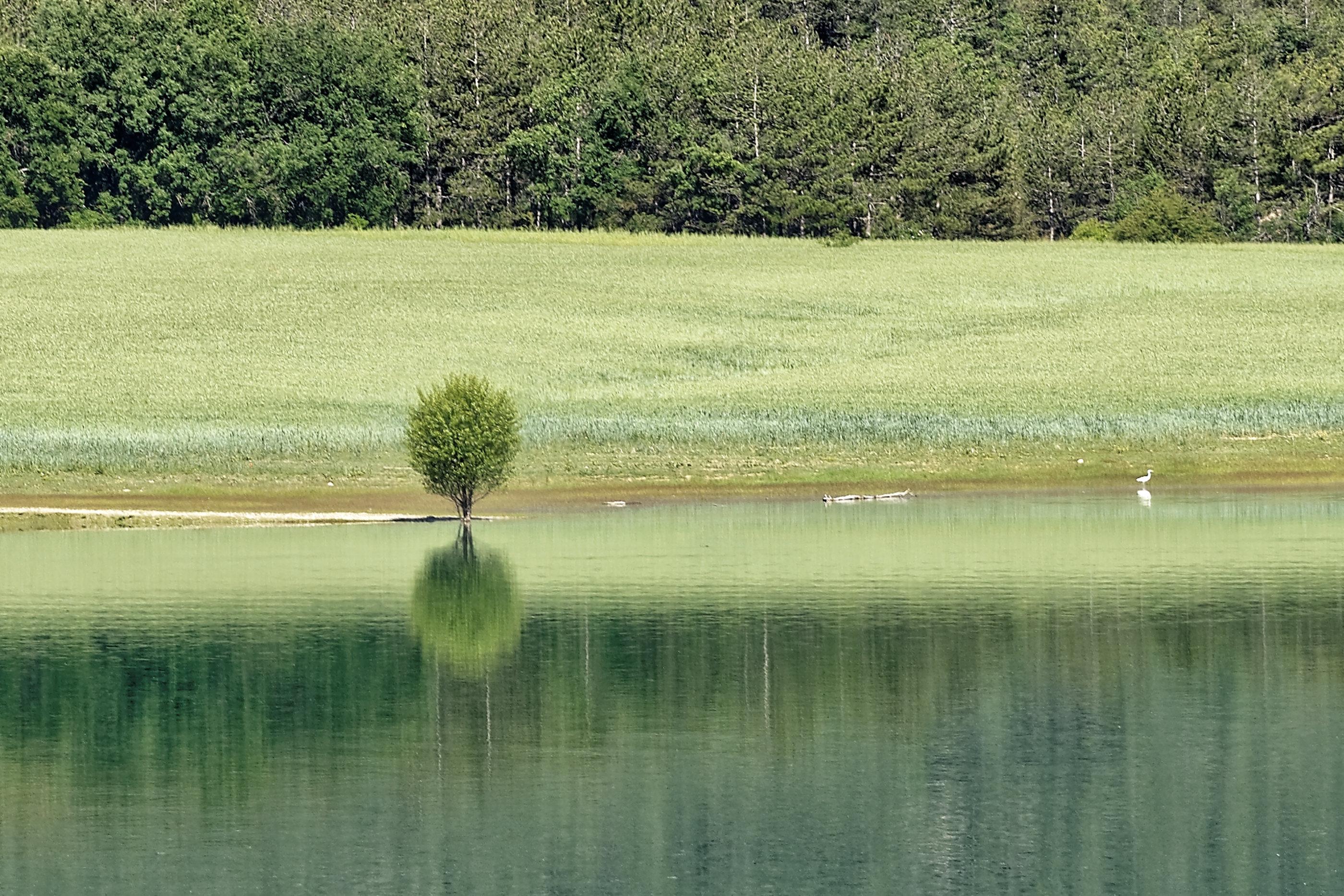 170514-Lac Mediano (Sobrarbe) (138)