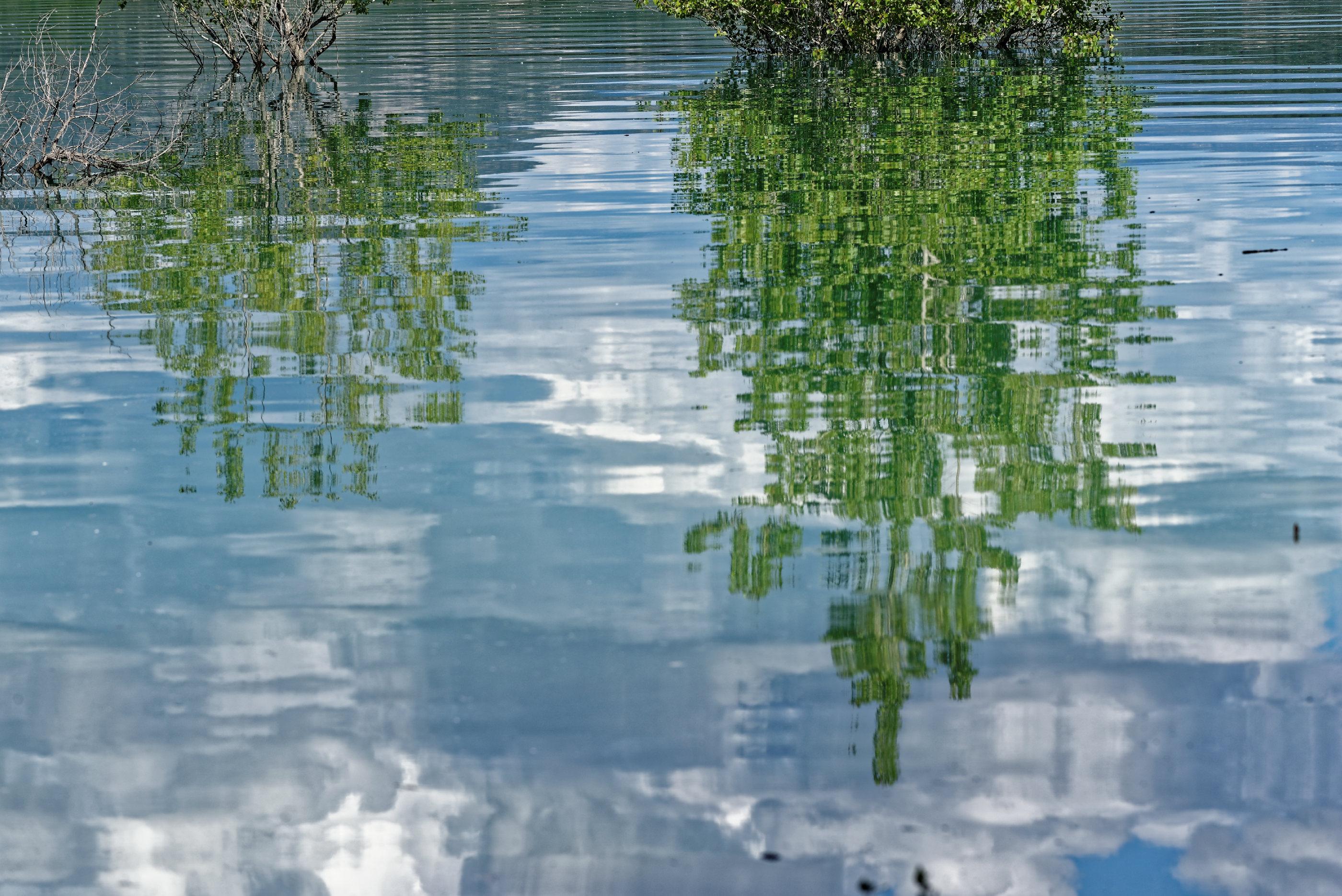 170514-Lac Mediano (Sobrarbe) (141)