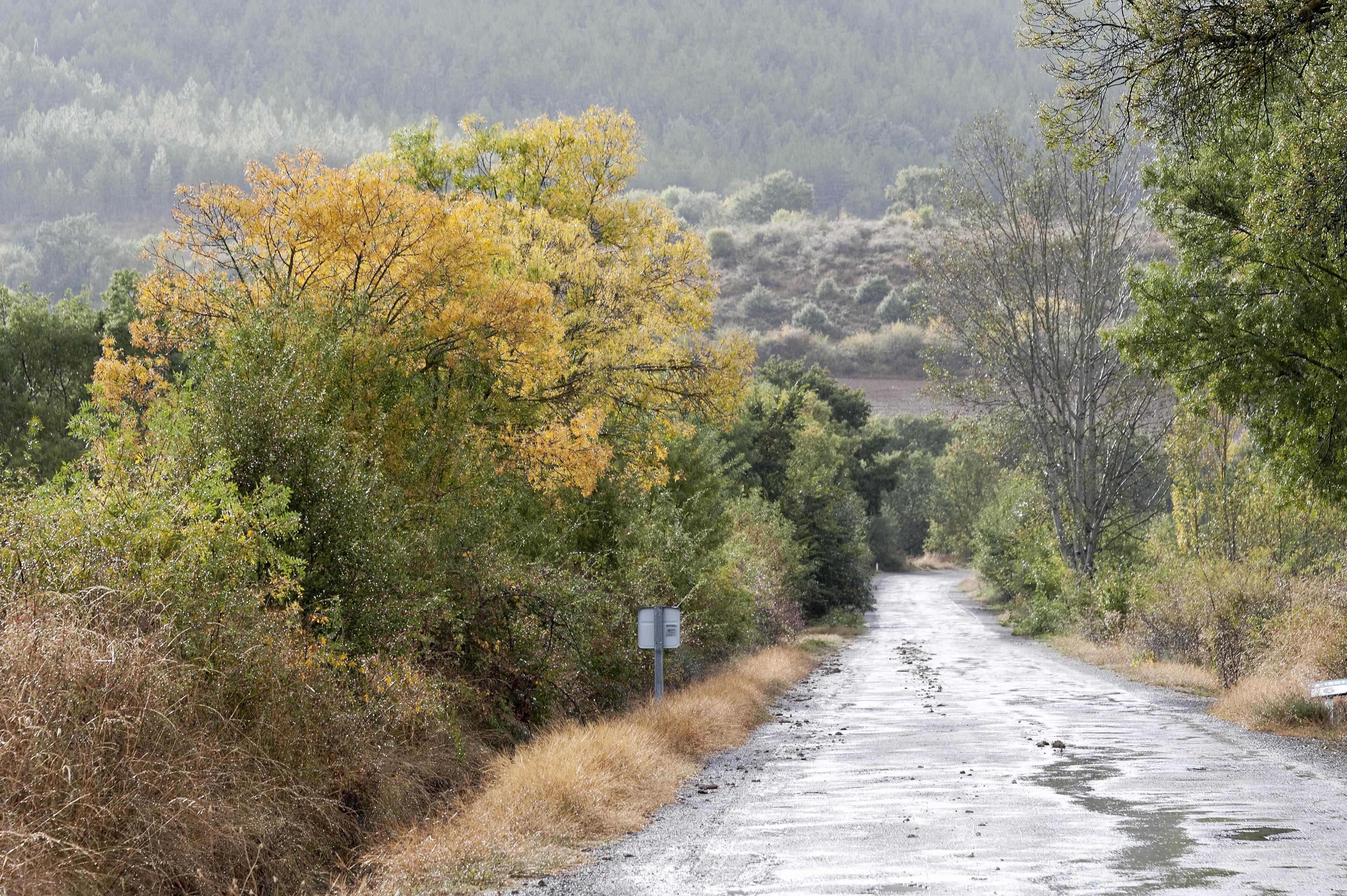 3306_Route de Ruesta - Lac Yesa (Aragon)