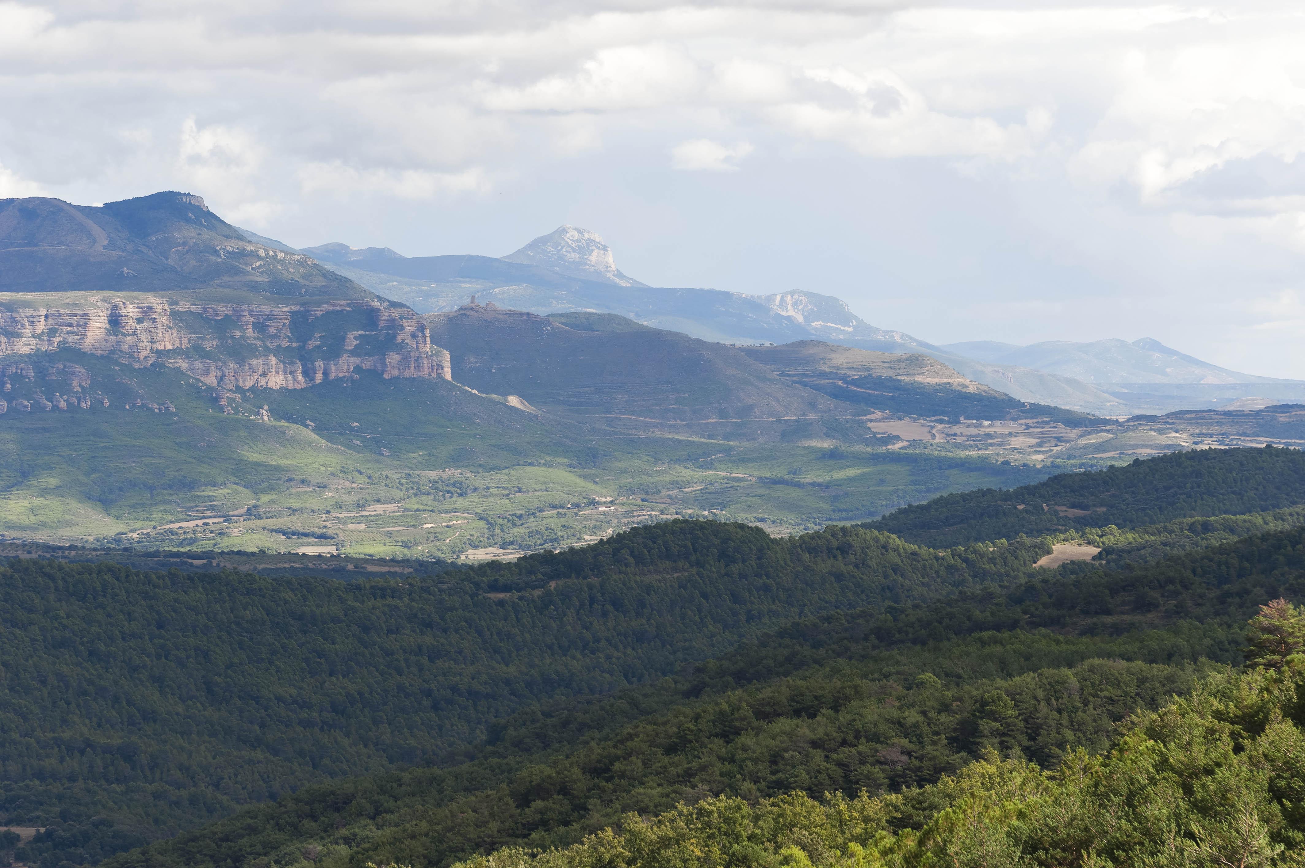 3497_Mallos de  Riglos (Aragon)