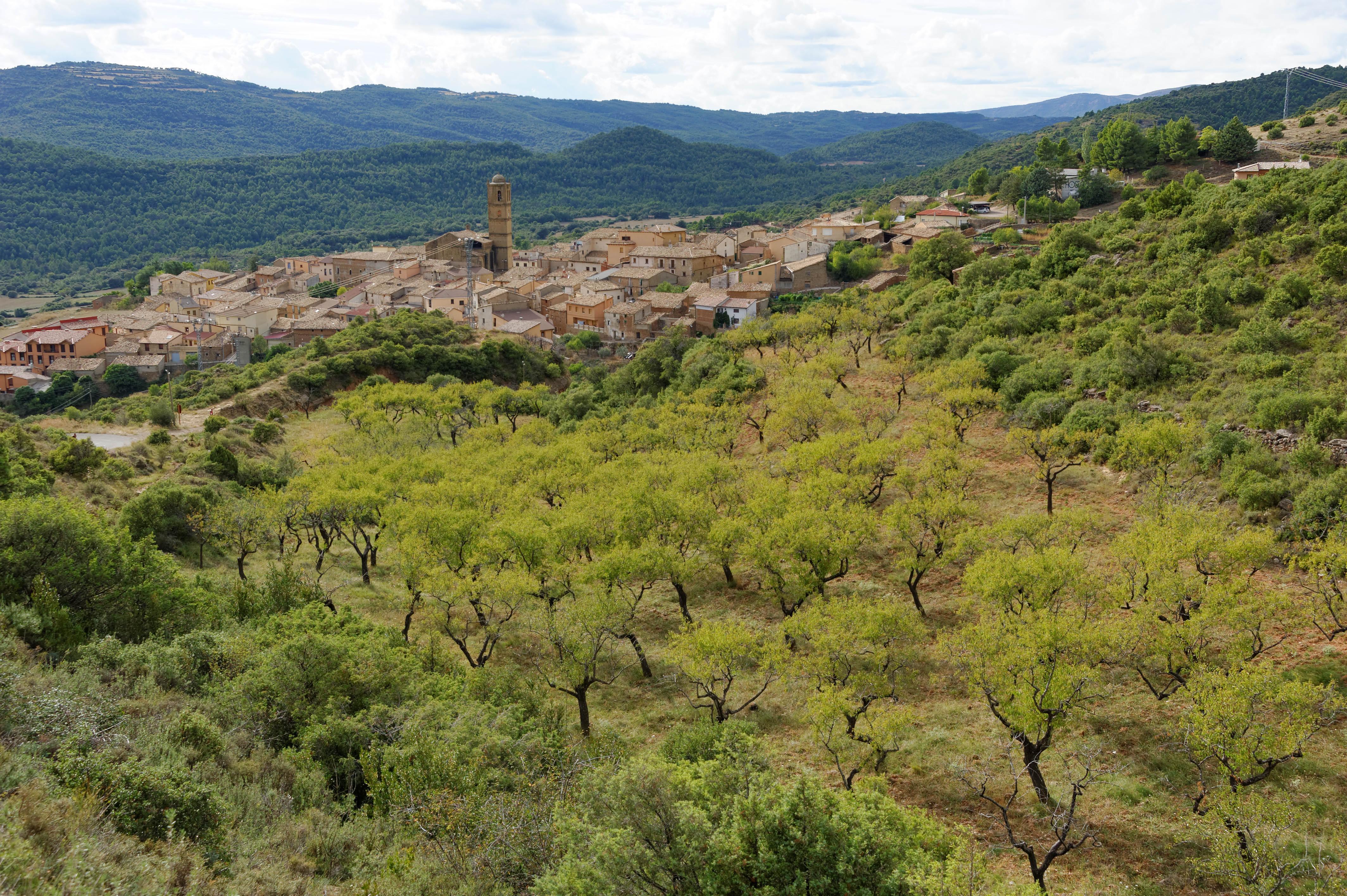 3515_Aguero (Aragon)