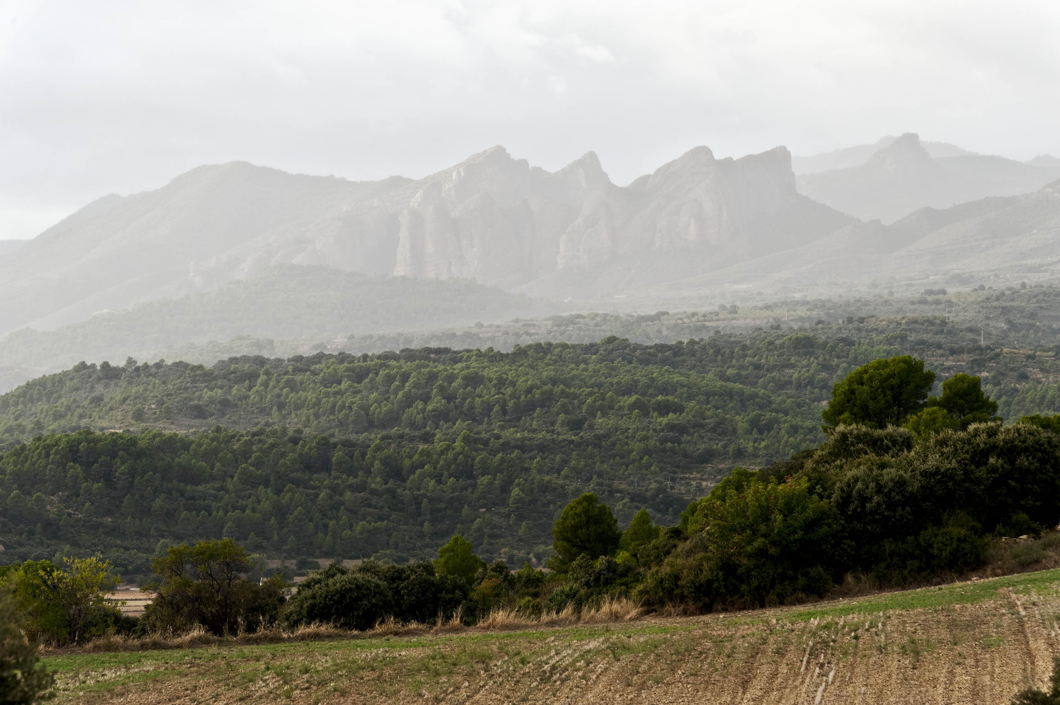 3588_Mallos de Riglos (Aragon)