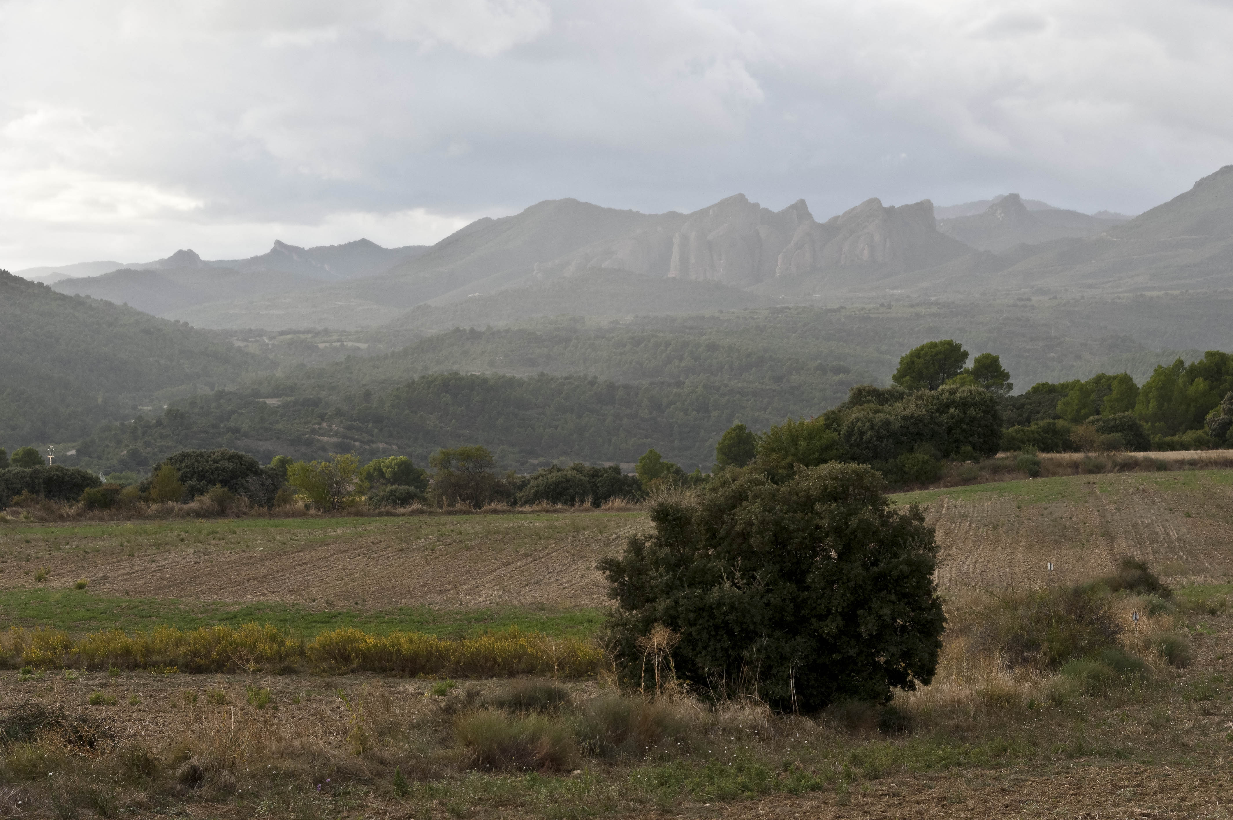 3594_Mallos de Riglos (Aragon)