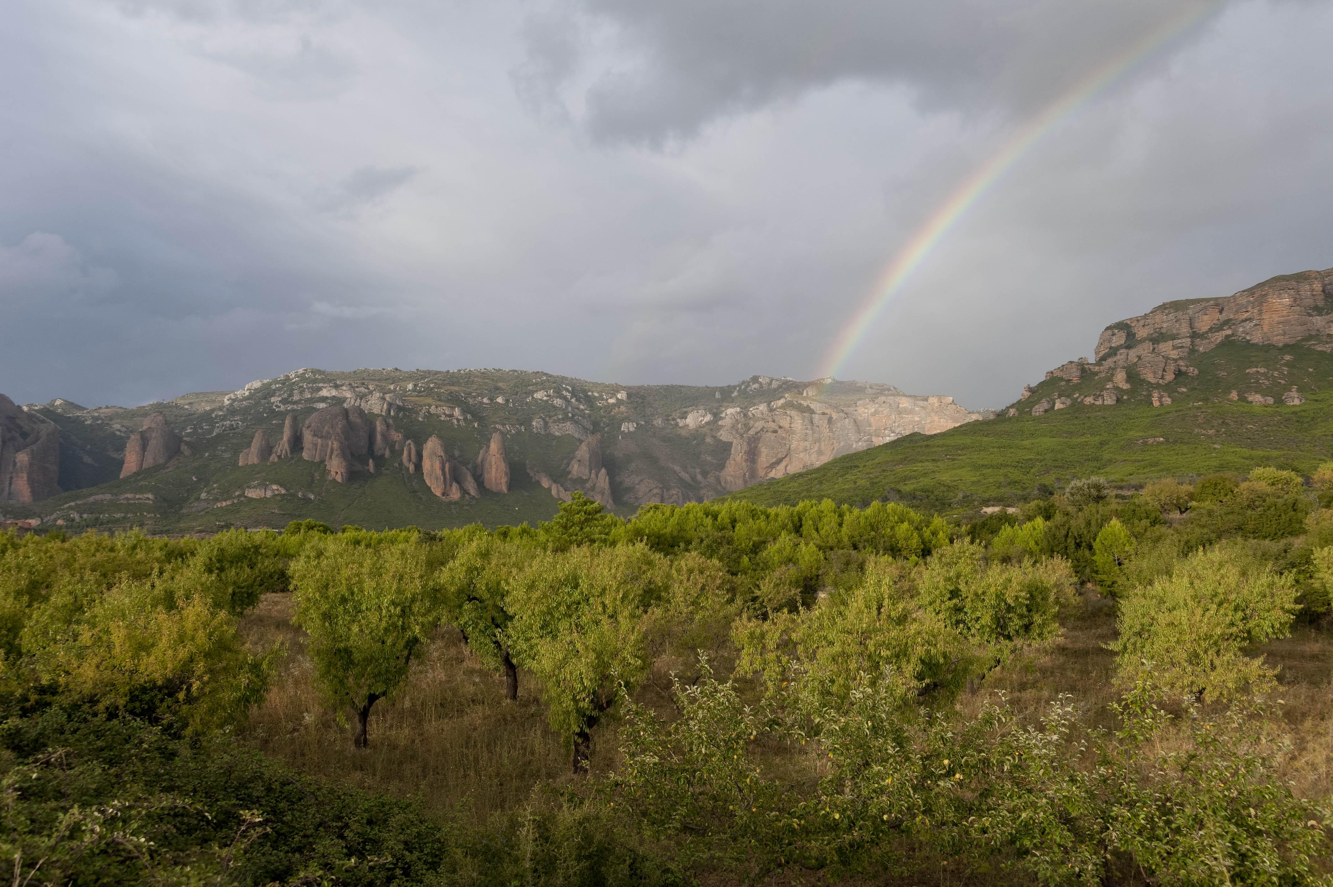 3605_Mallos de Riglos (Aragon)