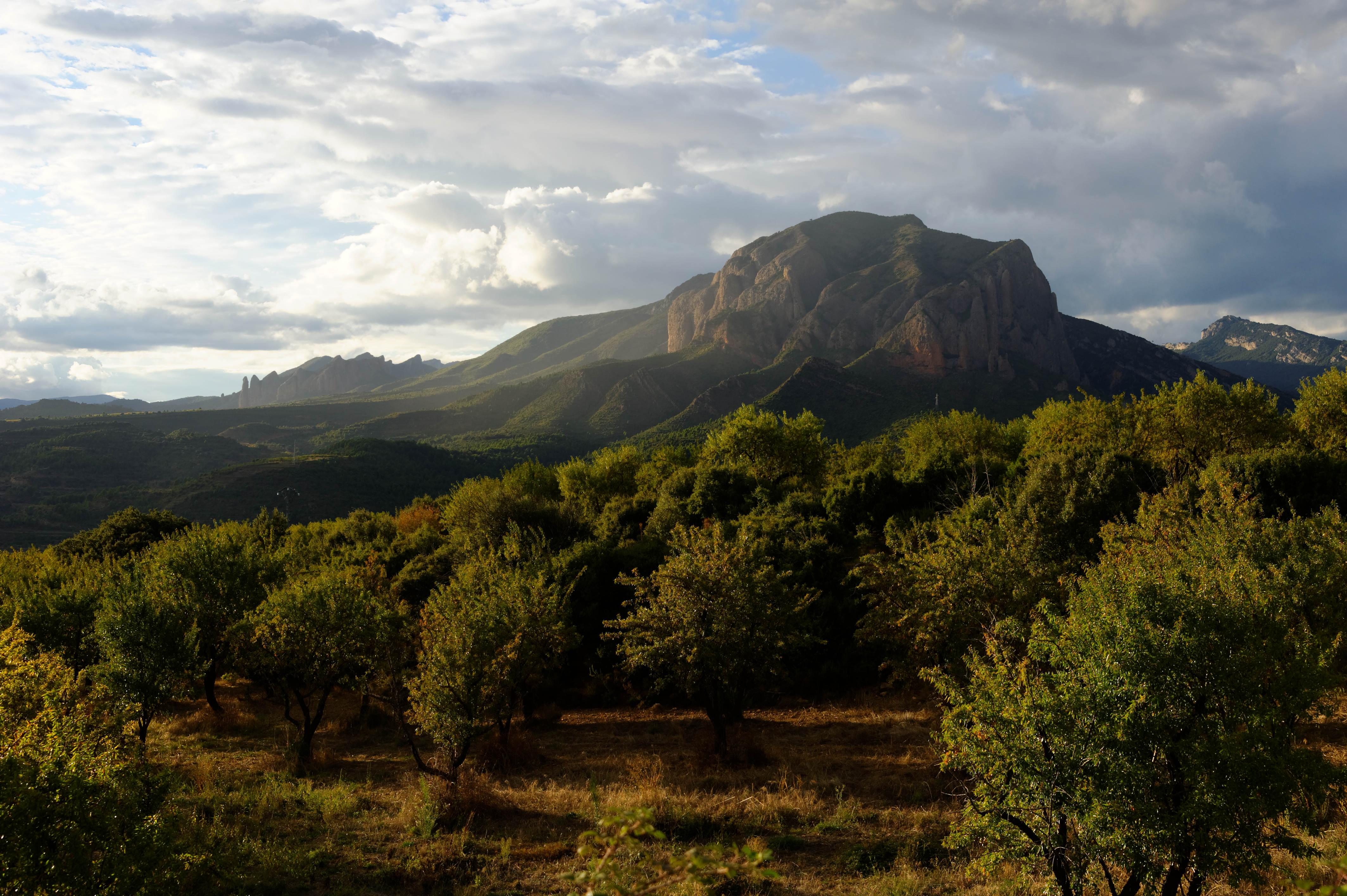 3619_Mallos de Riglos (Aragon)