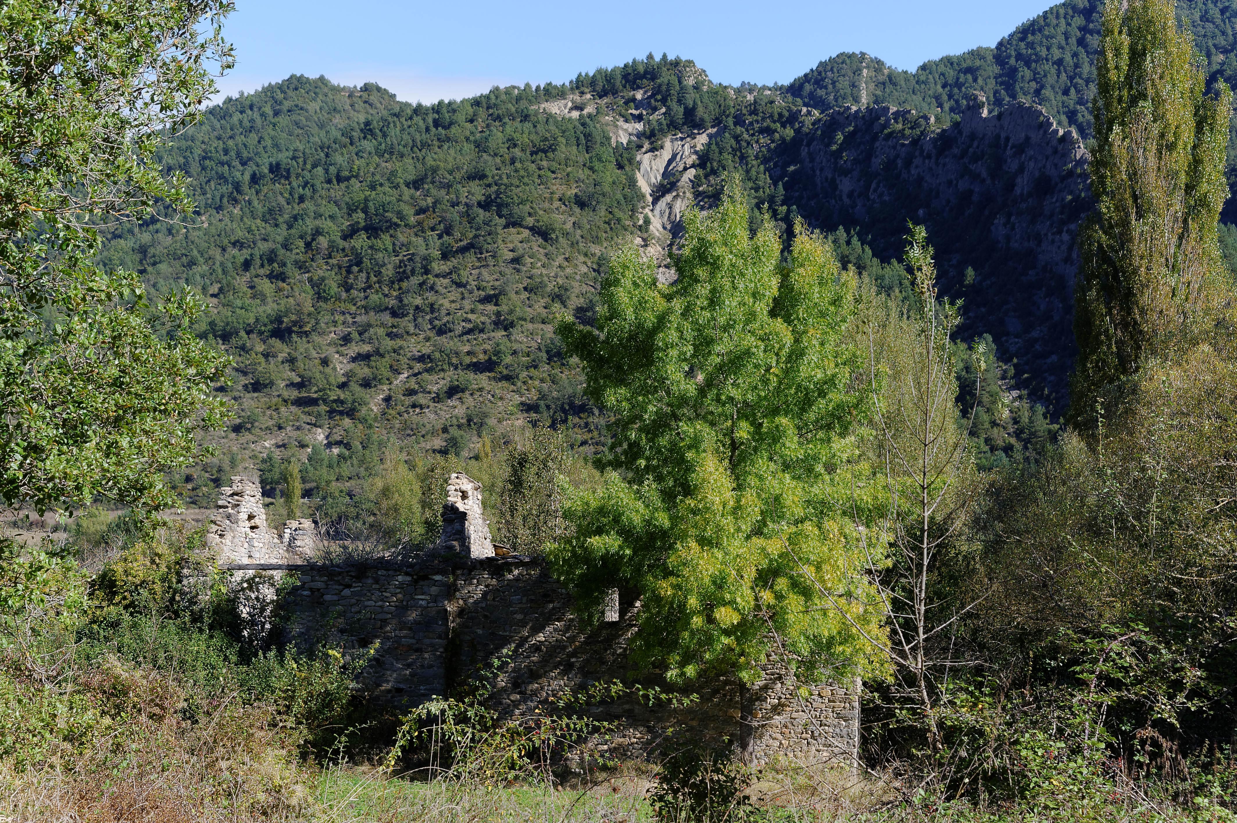 4114_Janovas (Aragon)