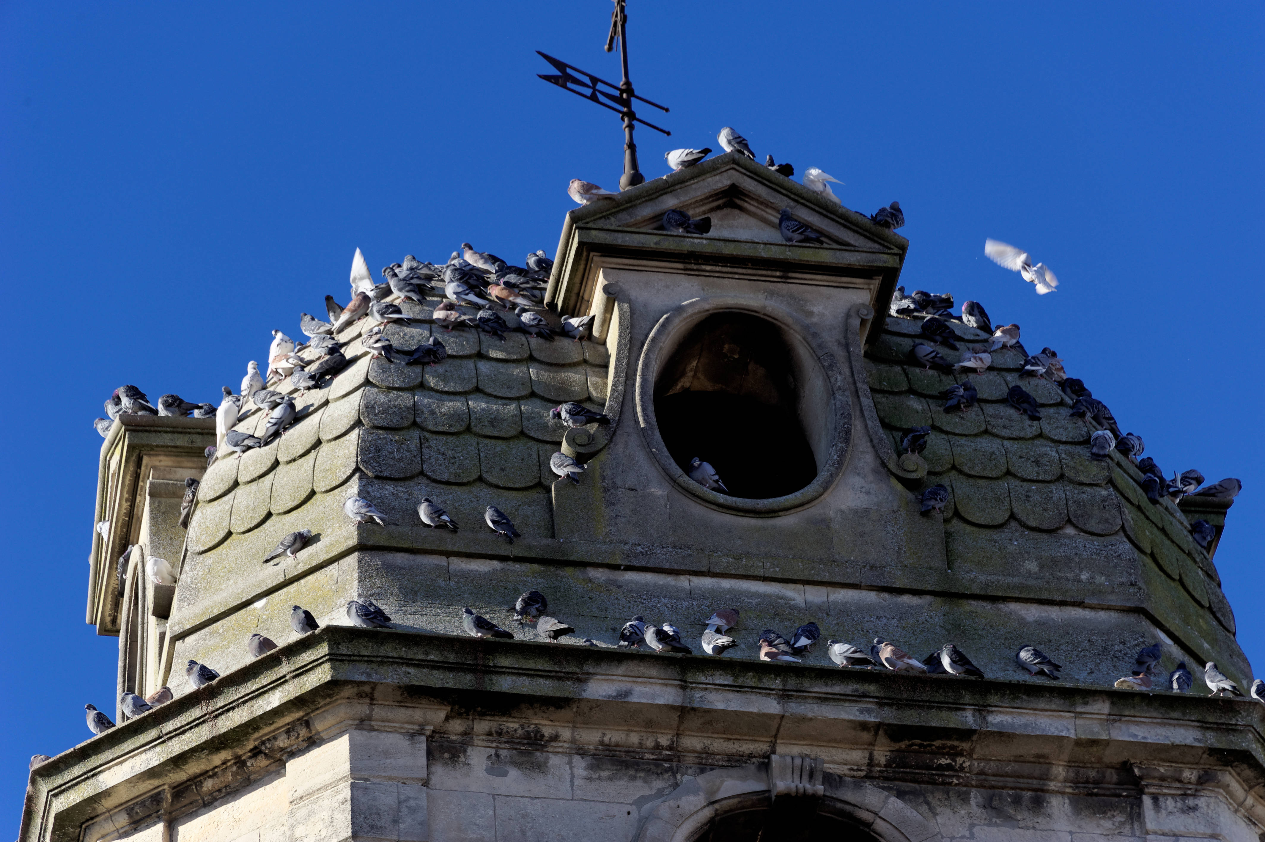 4845_Arles