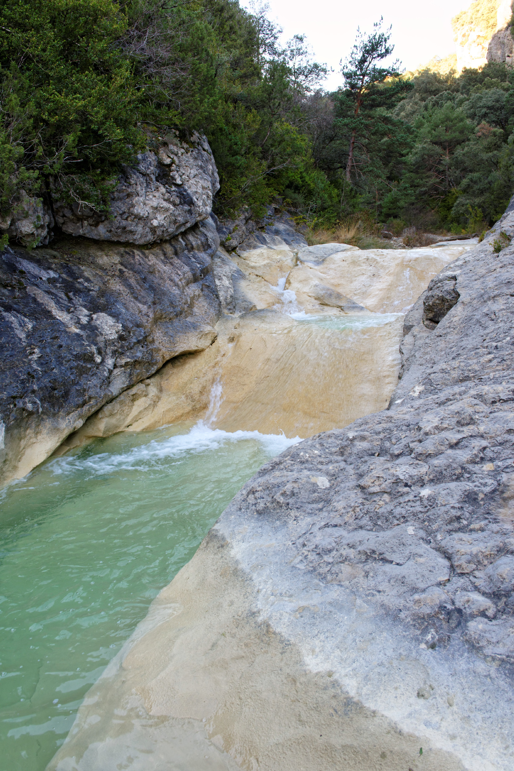 141208-Sieste - Canyon et Barranco (Sobrarbe) (33)