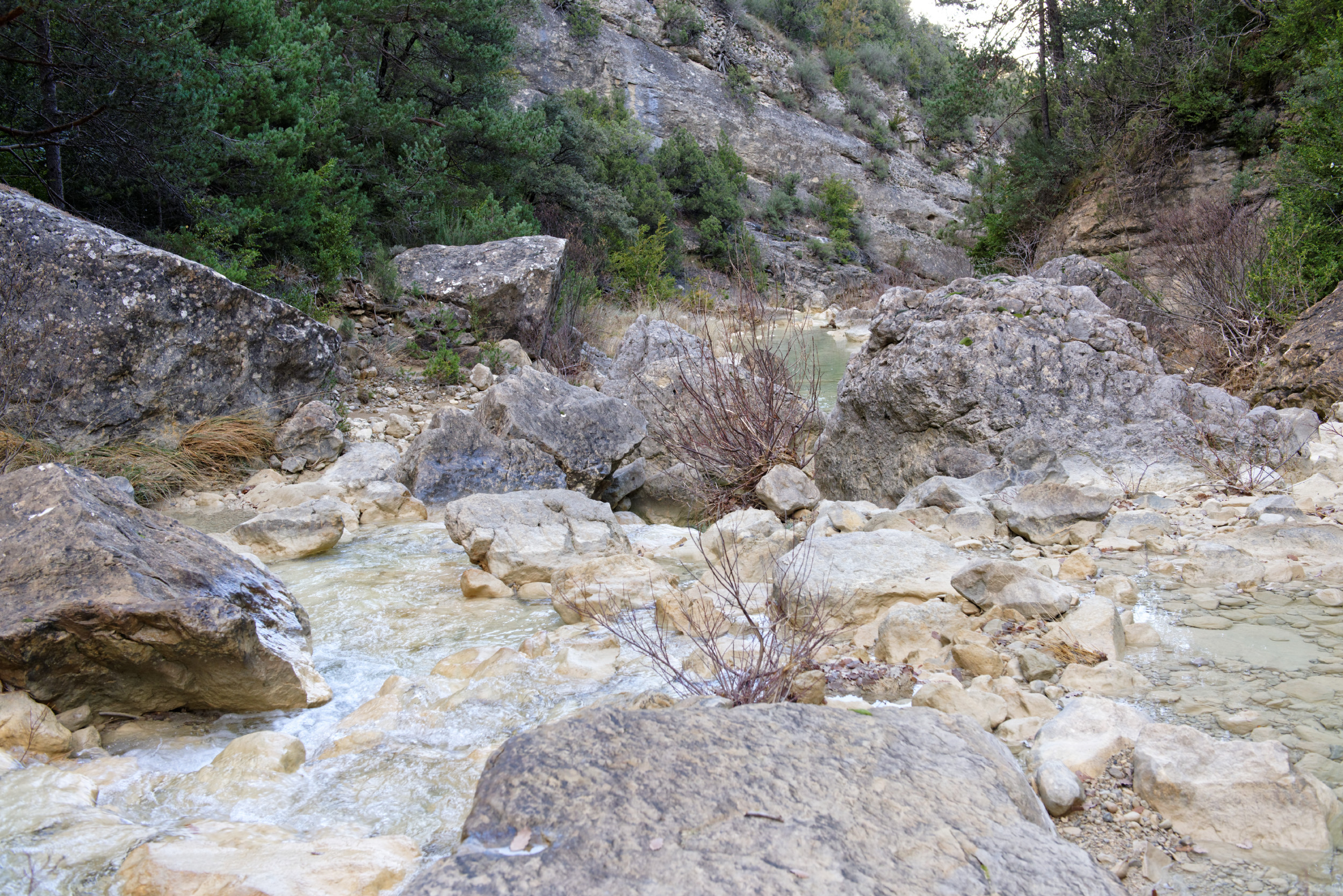 141208-Sieste - Canyon et Barranco (Sobrarbe) (36)