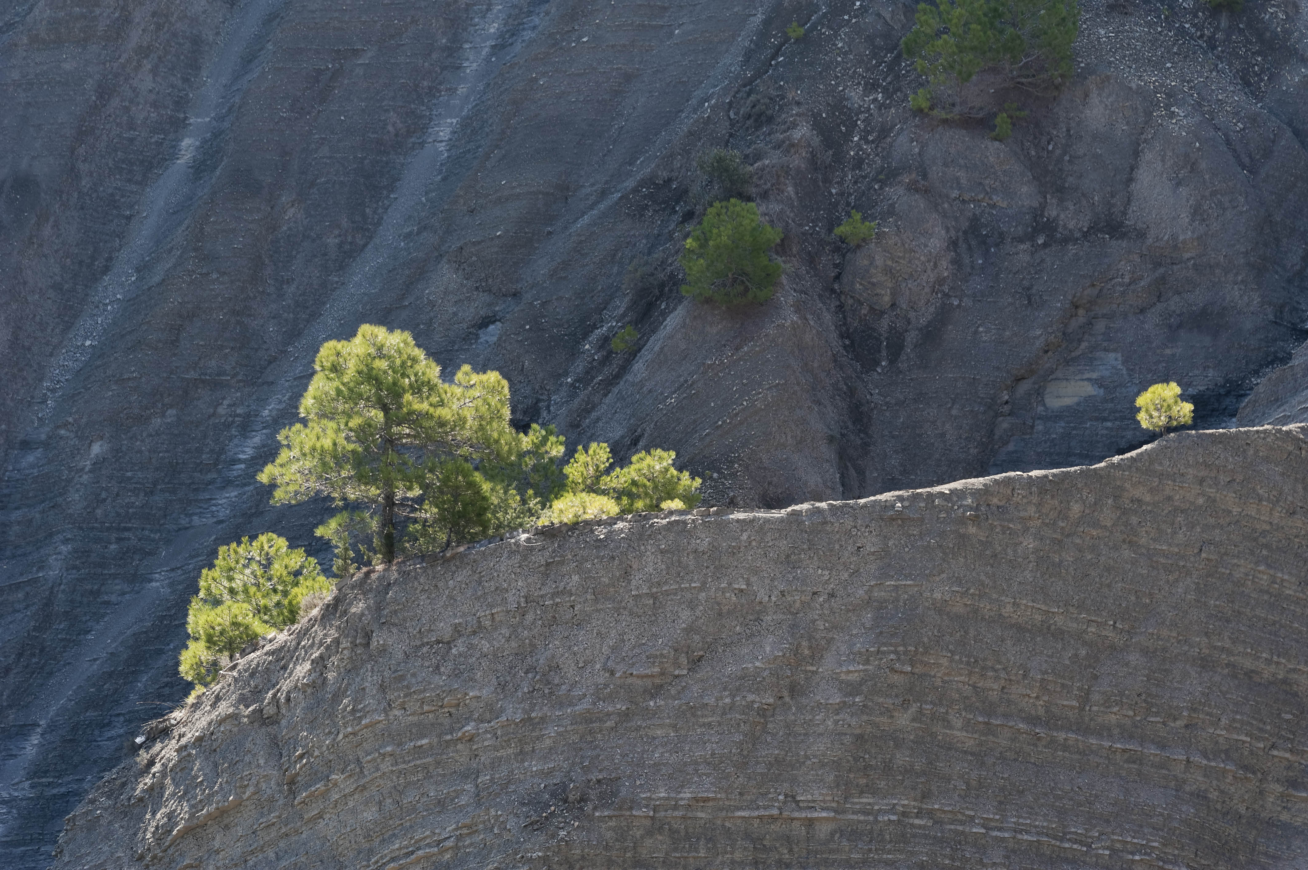 5215_San Vicente de Labuerda (Sobrarbe Aragon)