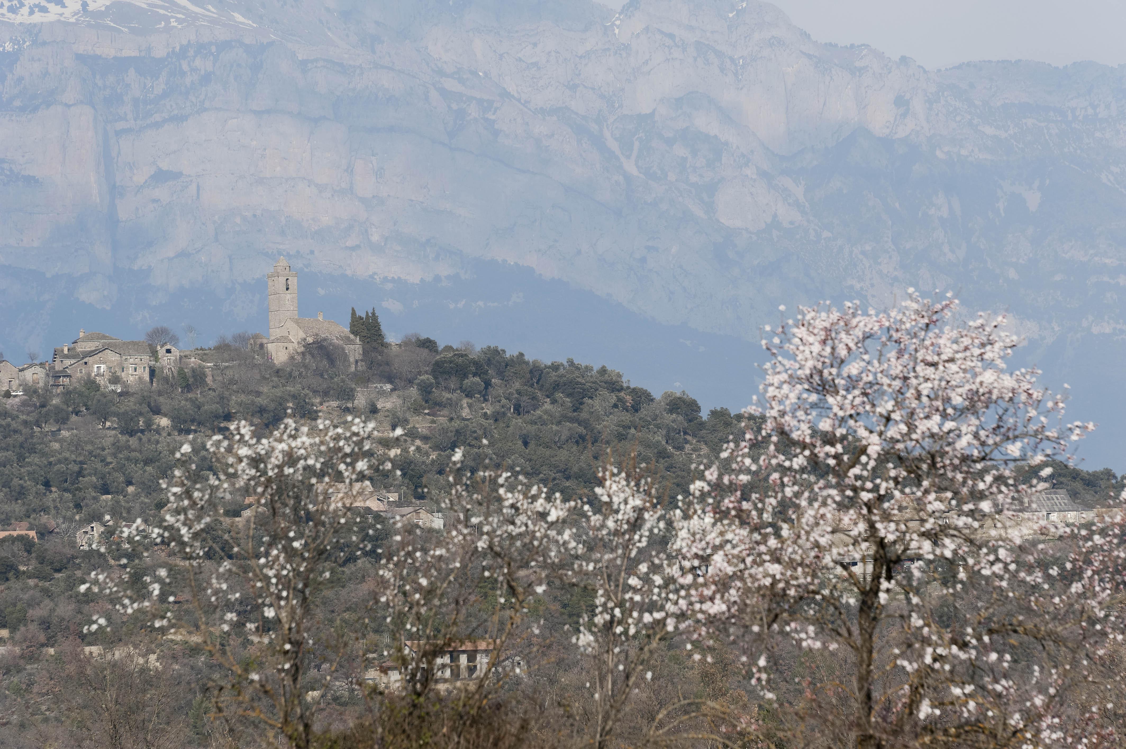 5365_Guaso (Sobrarbe Aragon)