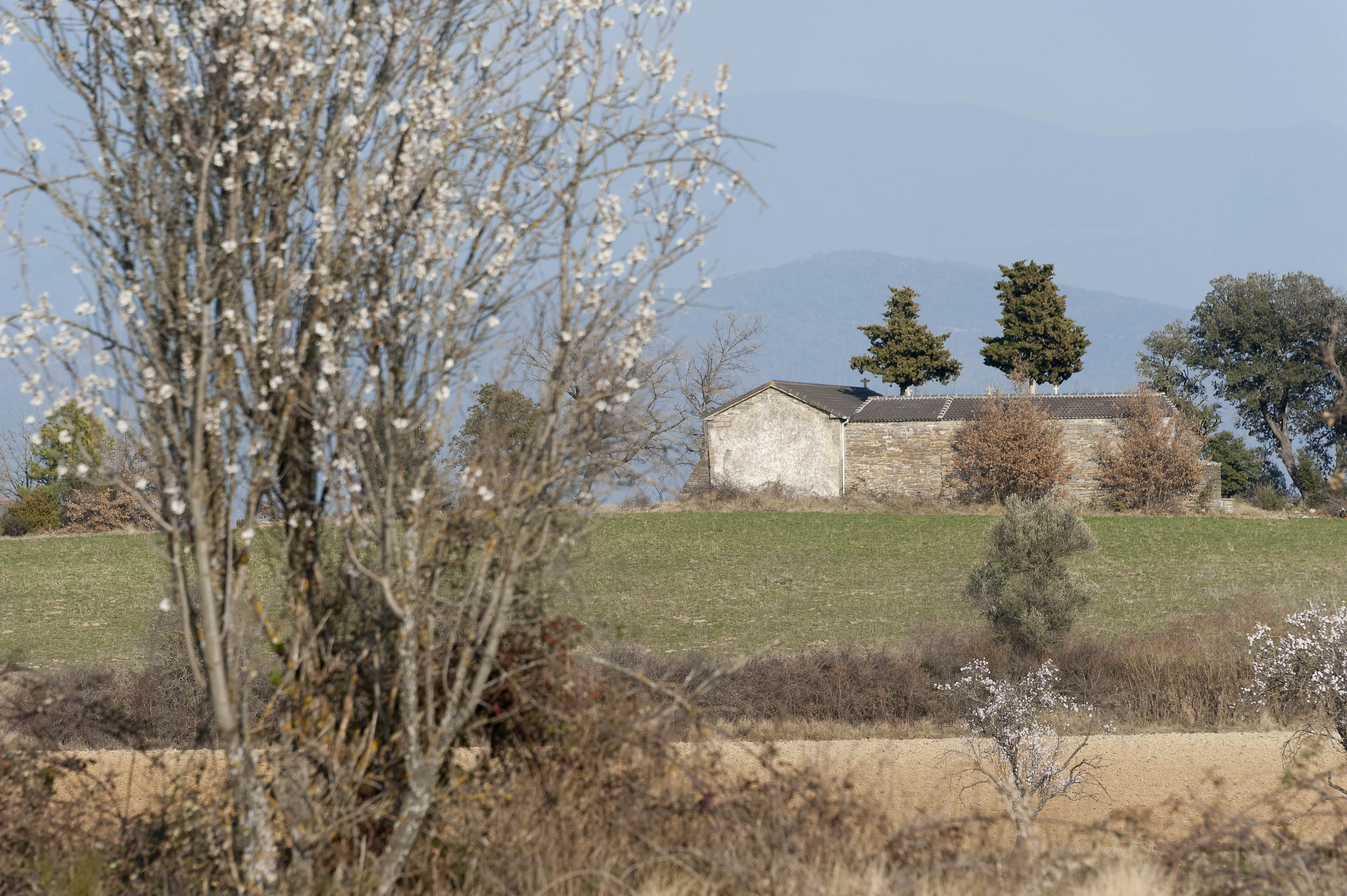 5366_Latorrecilla (Sobrarbe Aragon)