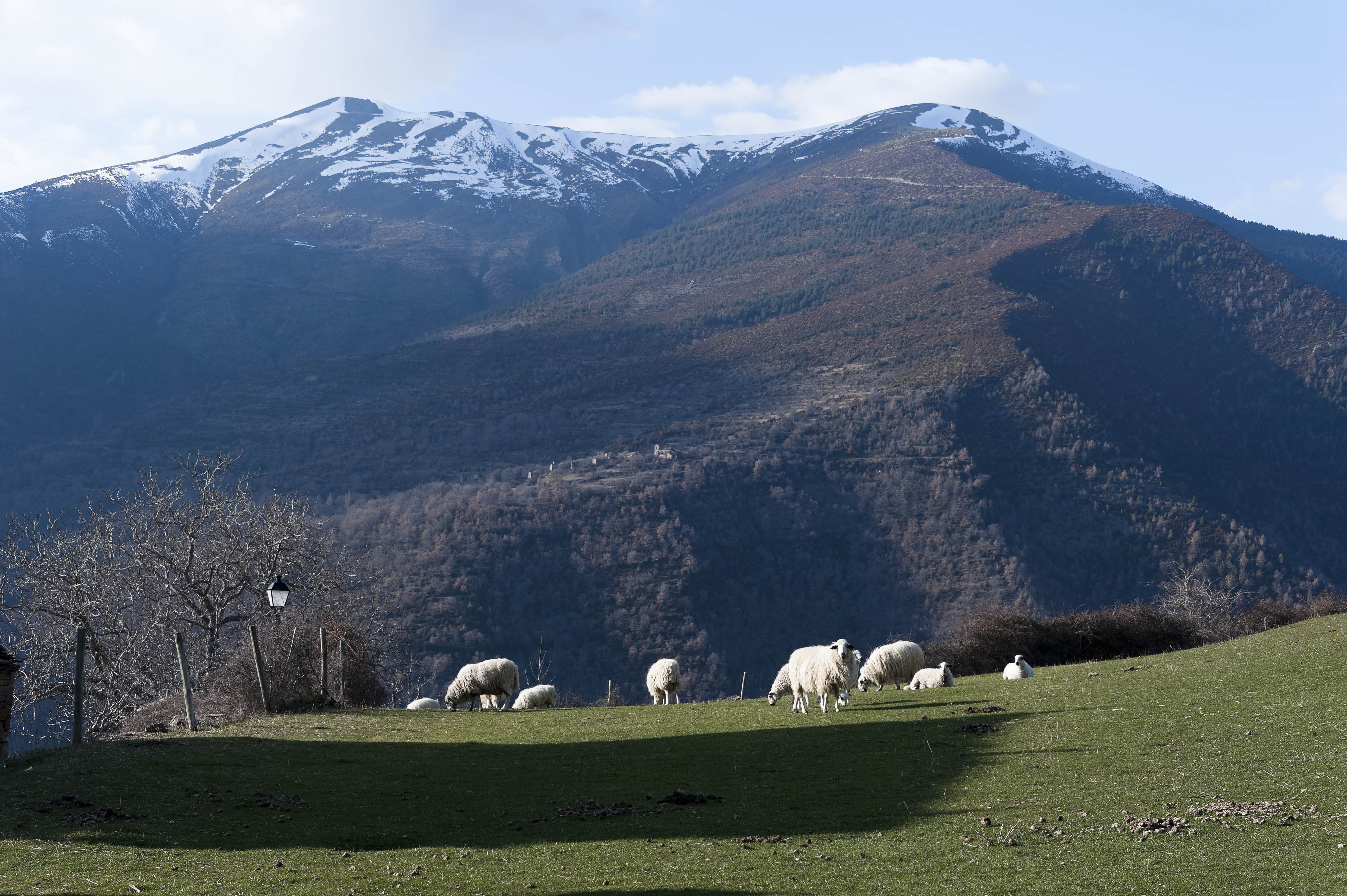 5620_Asin de Broto (Sobrarbe Aragon)