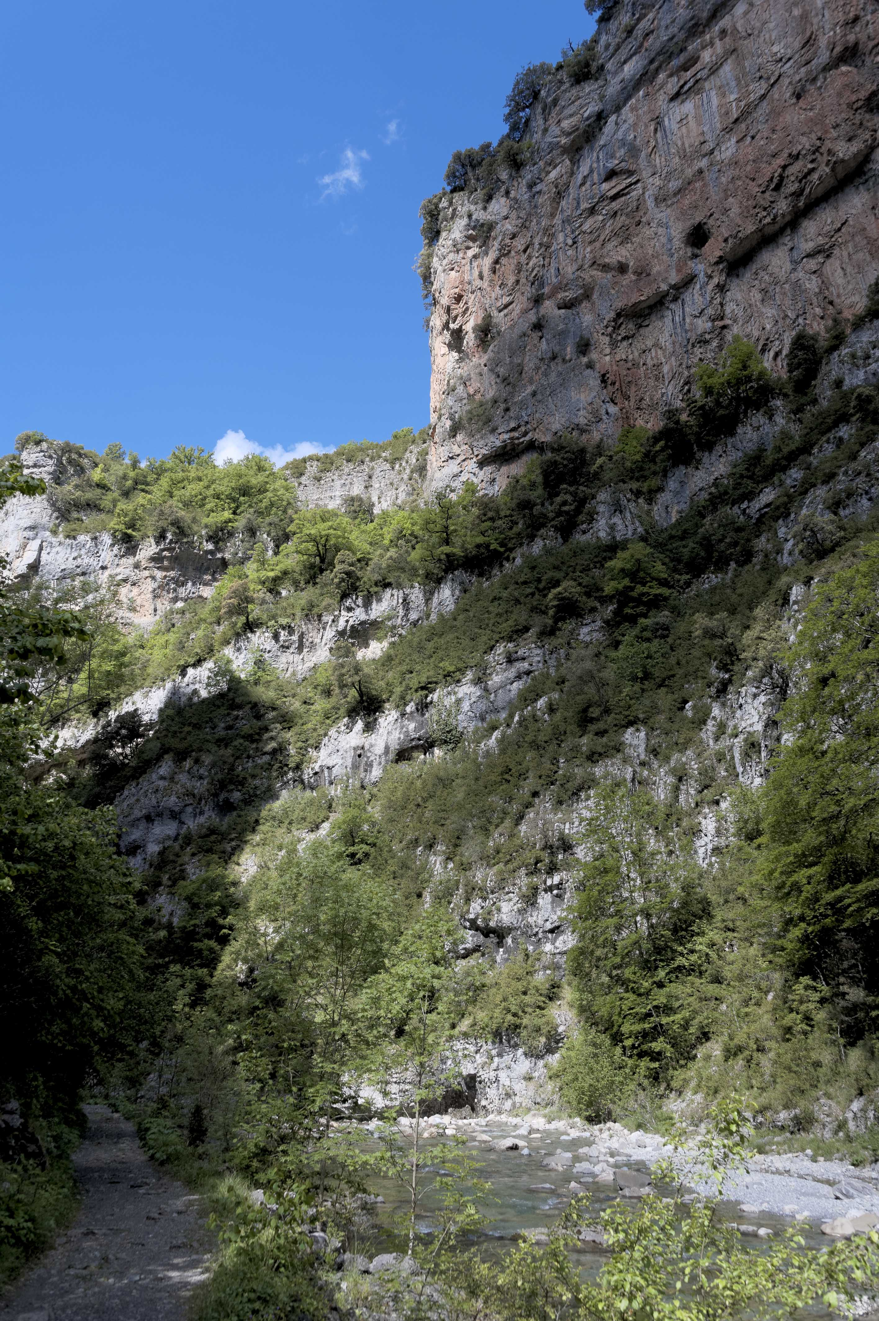6550_Canyon d'Anisclo (Sobrarbe)