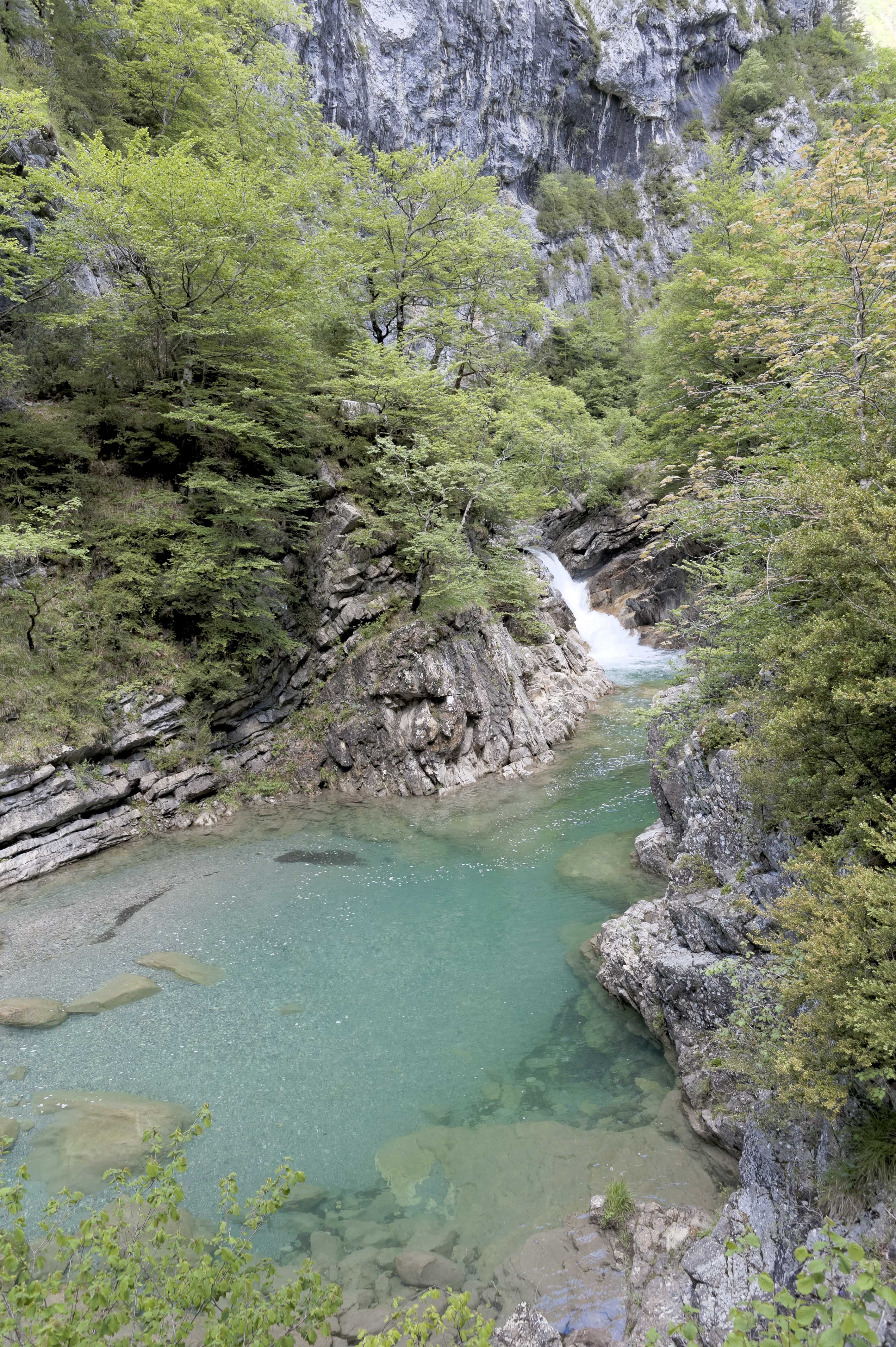 6551_Canyon d'Anisclo (Sobrarbe)