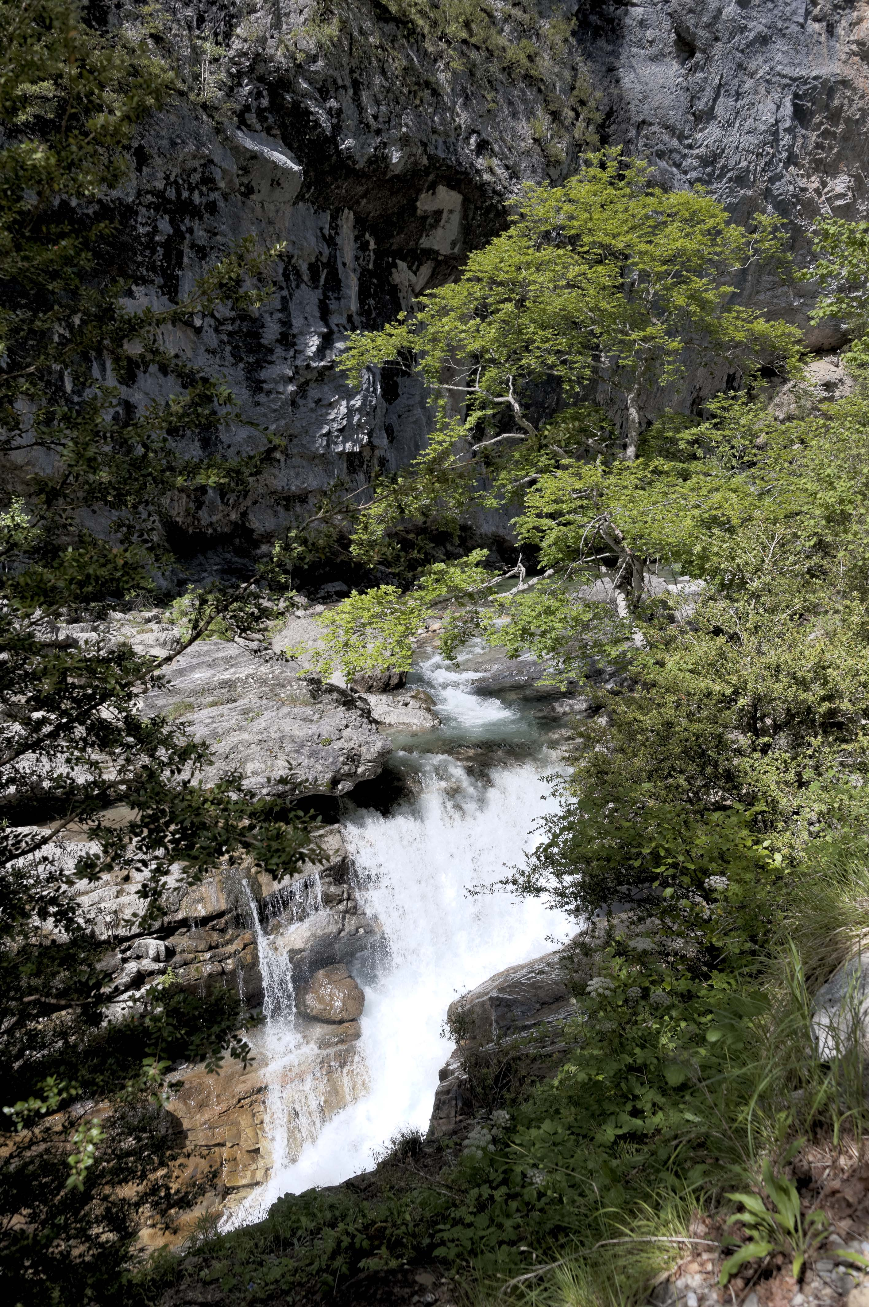 6553_Canyon d'Anisclo (Sobrarbe)