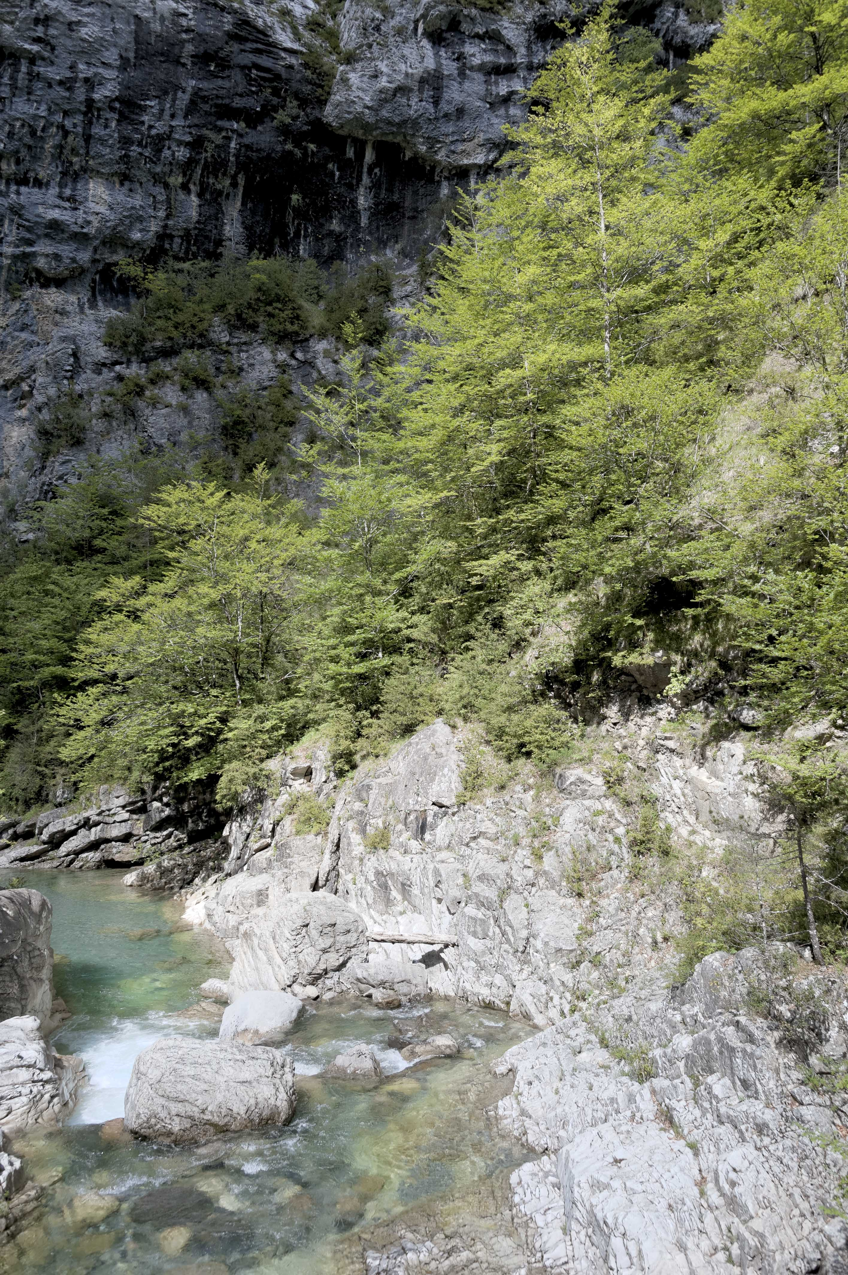 6559_Canyon d'Anisclo (Sobrarbe)
