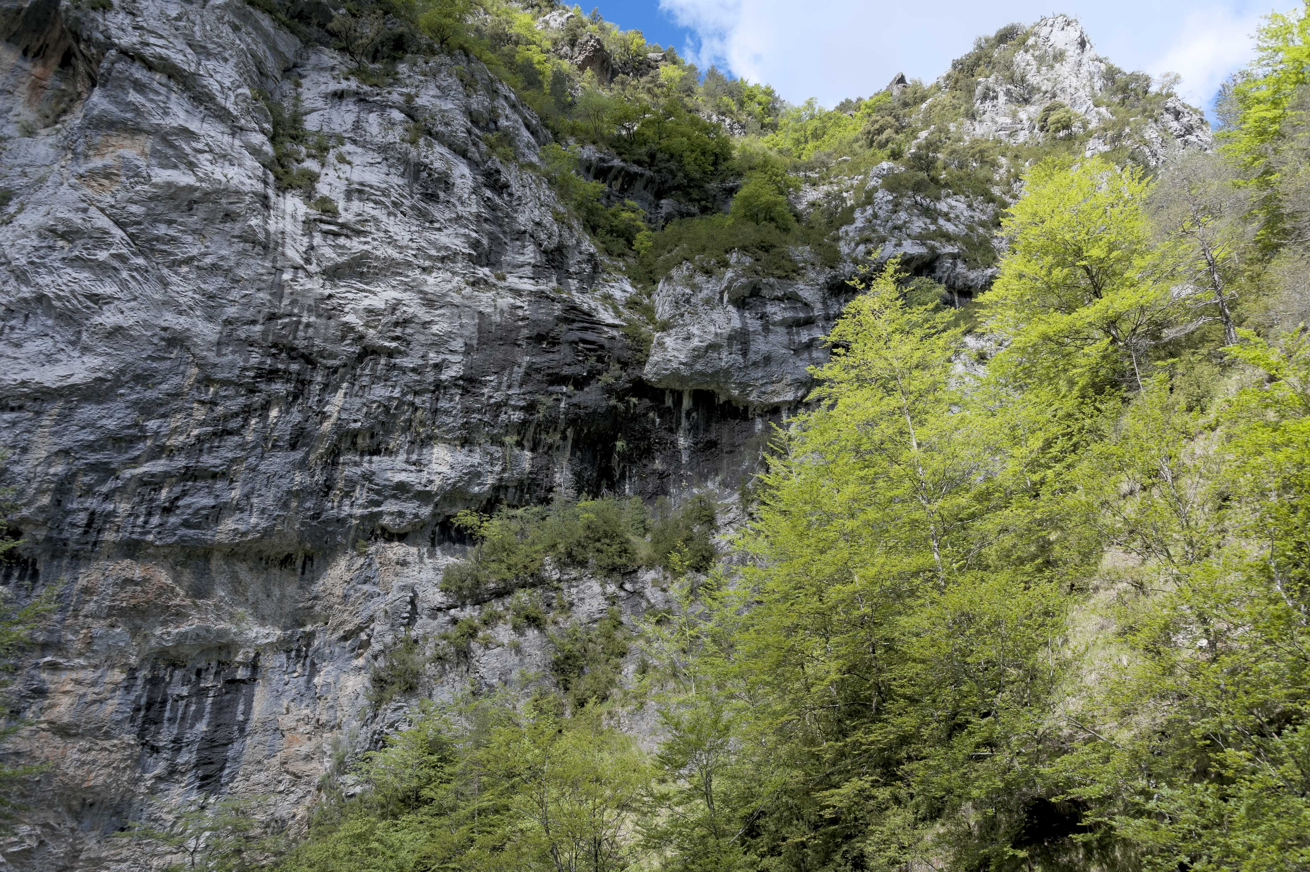 6560_Canyon d'Anisclo (Sobrarbe)