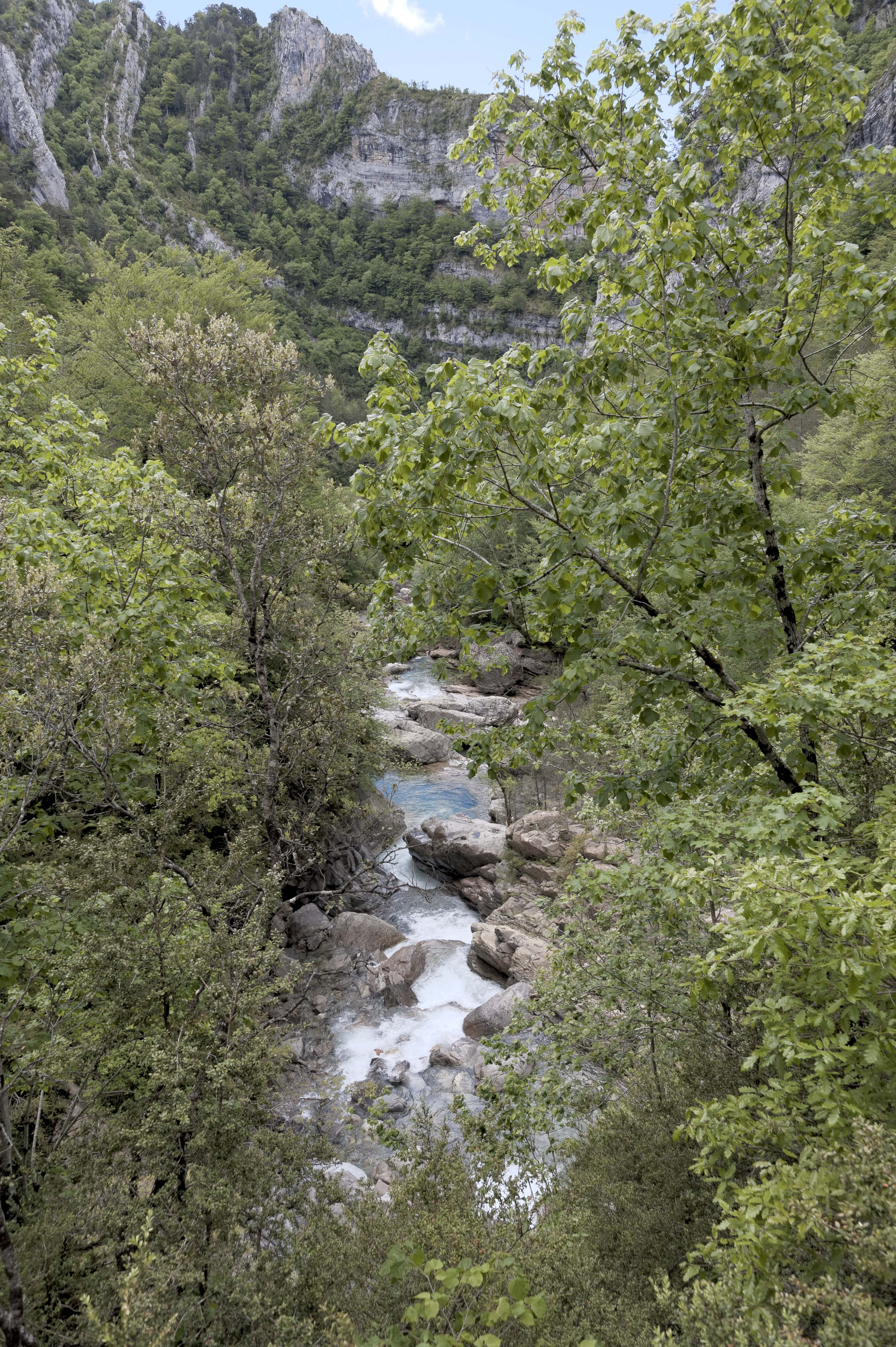 6568_Canyon d'Anisclo (Sobrarbe)