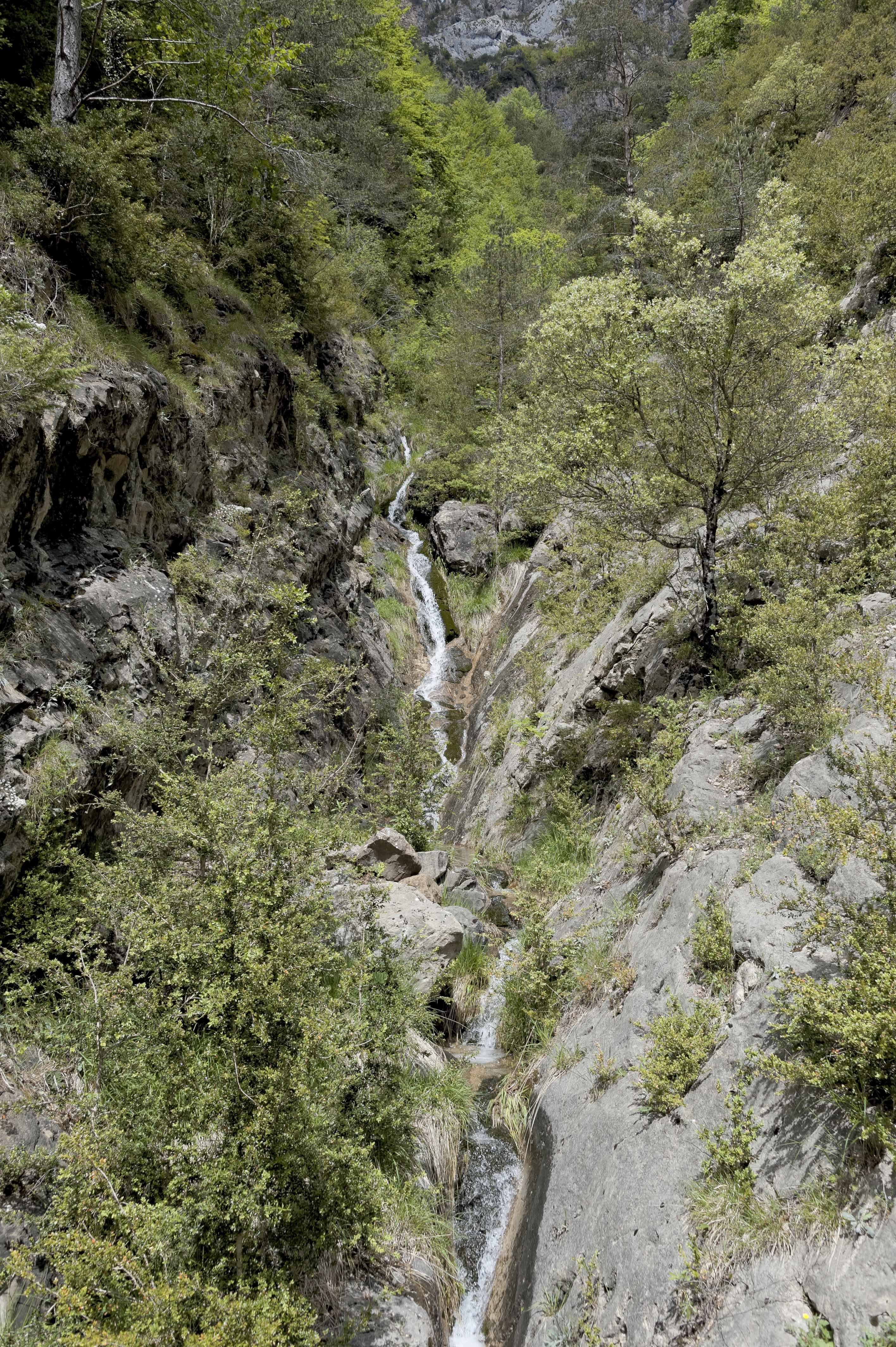 6579_Canyon d'Anisclo (Sobrarbe)