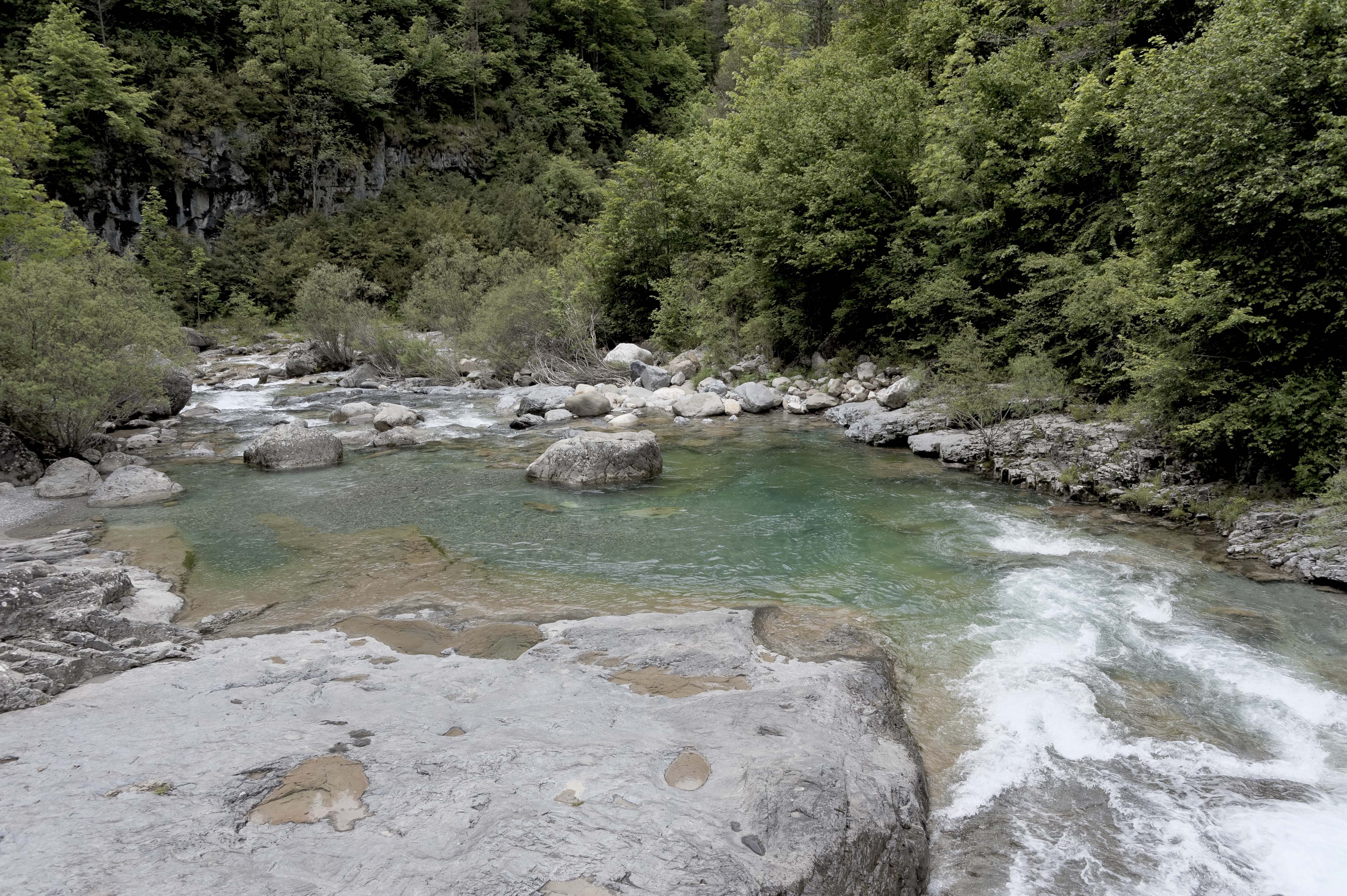 6588_Canyon d'Anisclo (Sobrarbe)