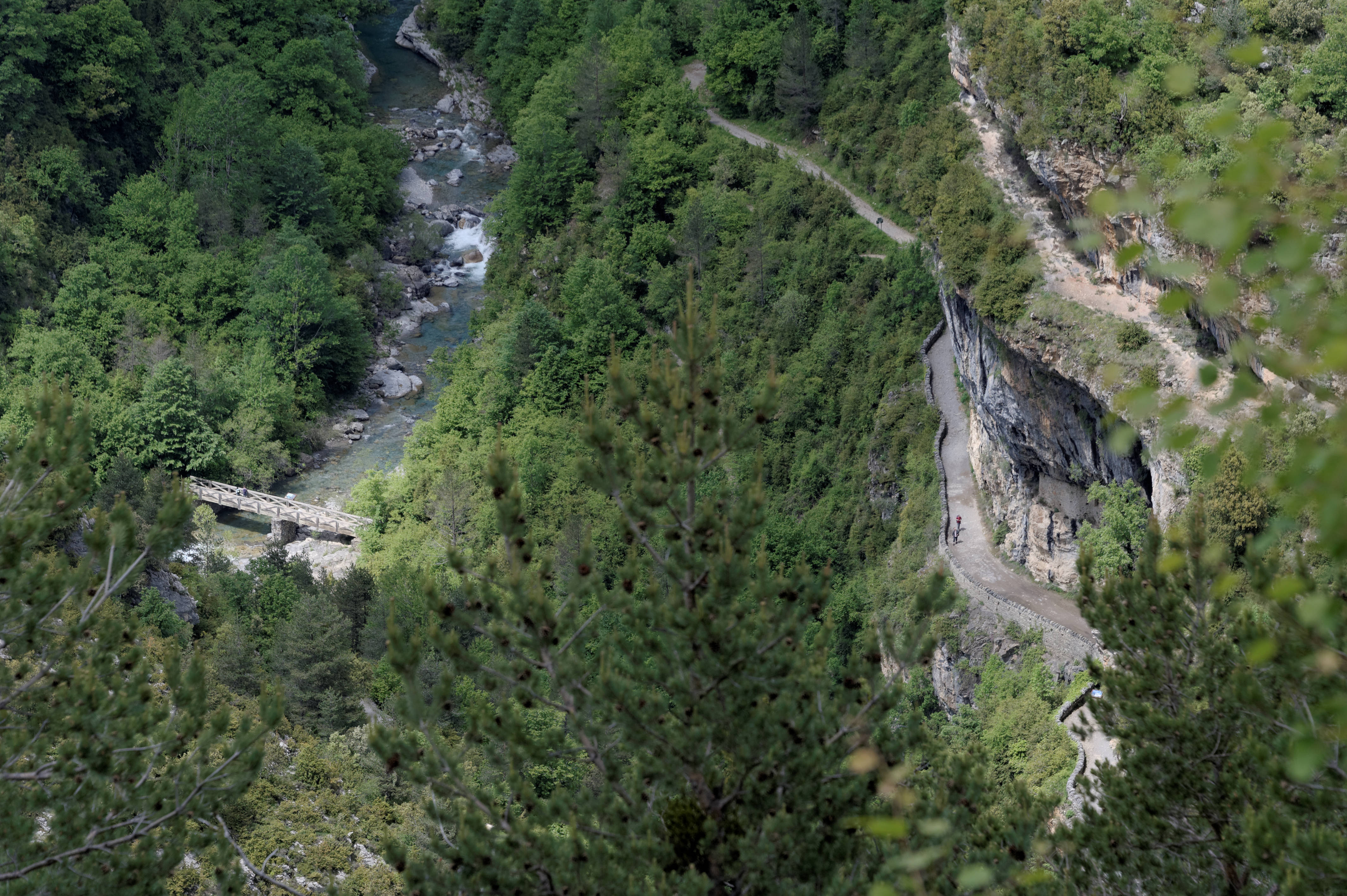 6621_Canyon d'Anisclo (Sobrarbe)
