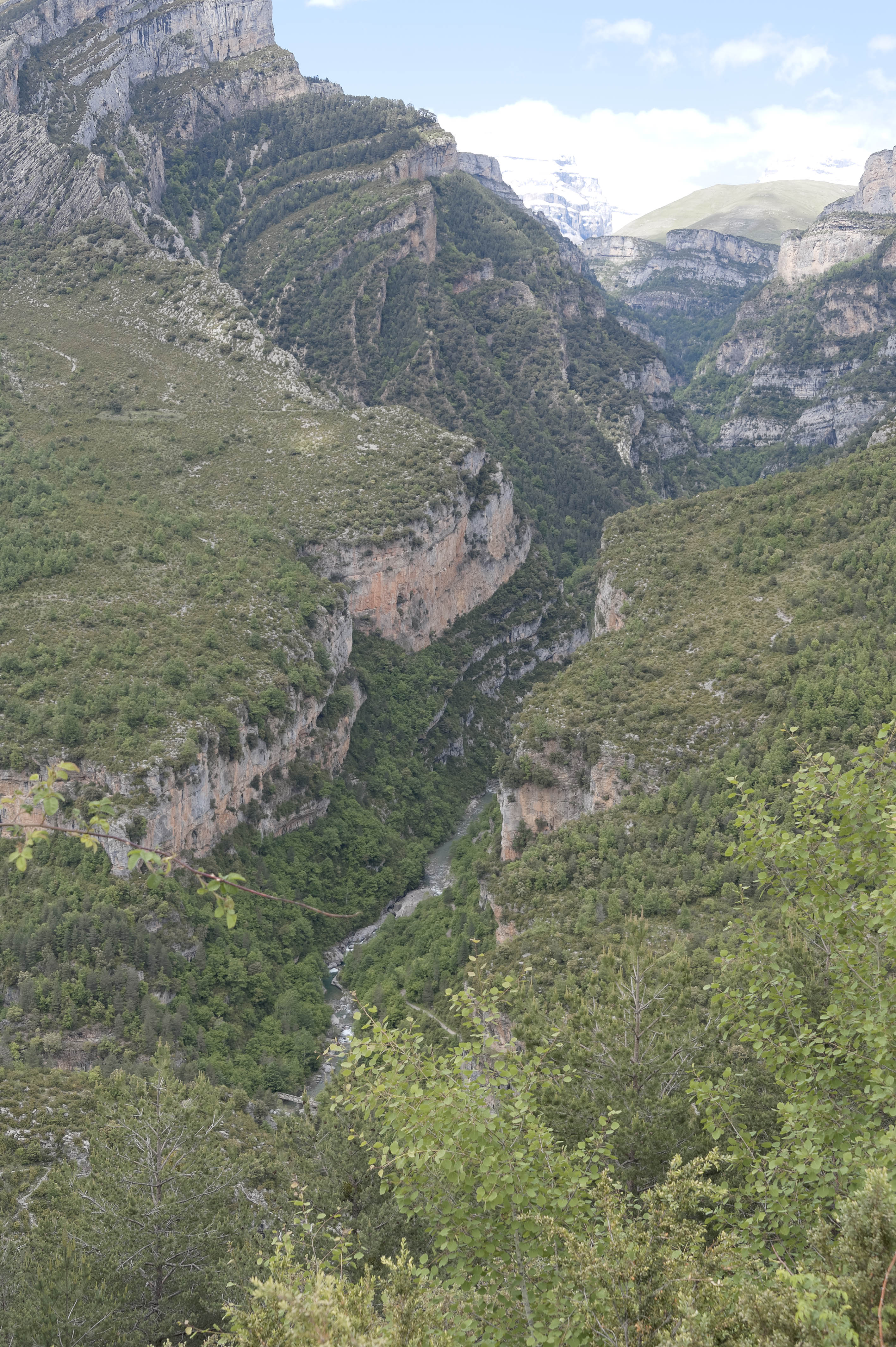 6624_Canyon d'Anisclo (Sobrarbe)