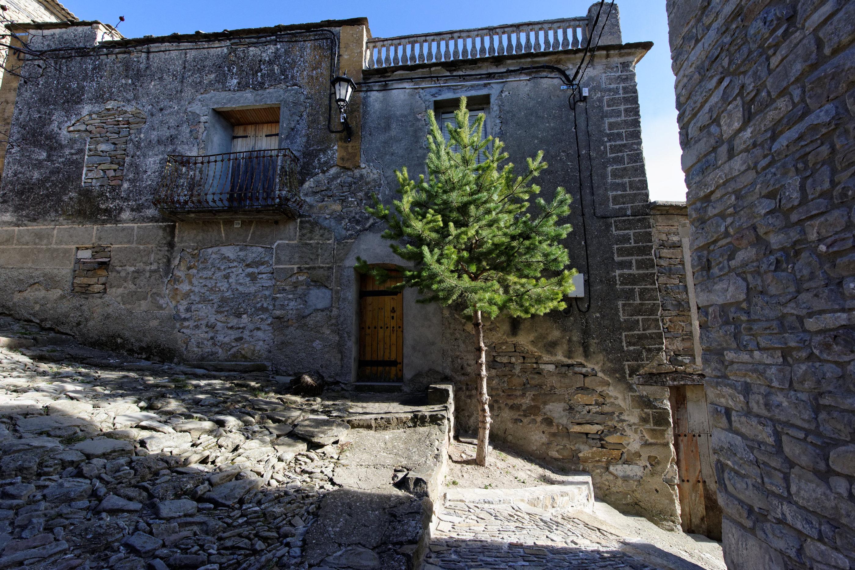 150127-Eripol (Biello Sobrarbe) (38)