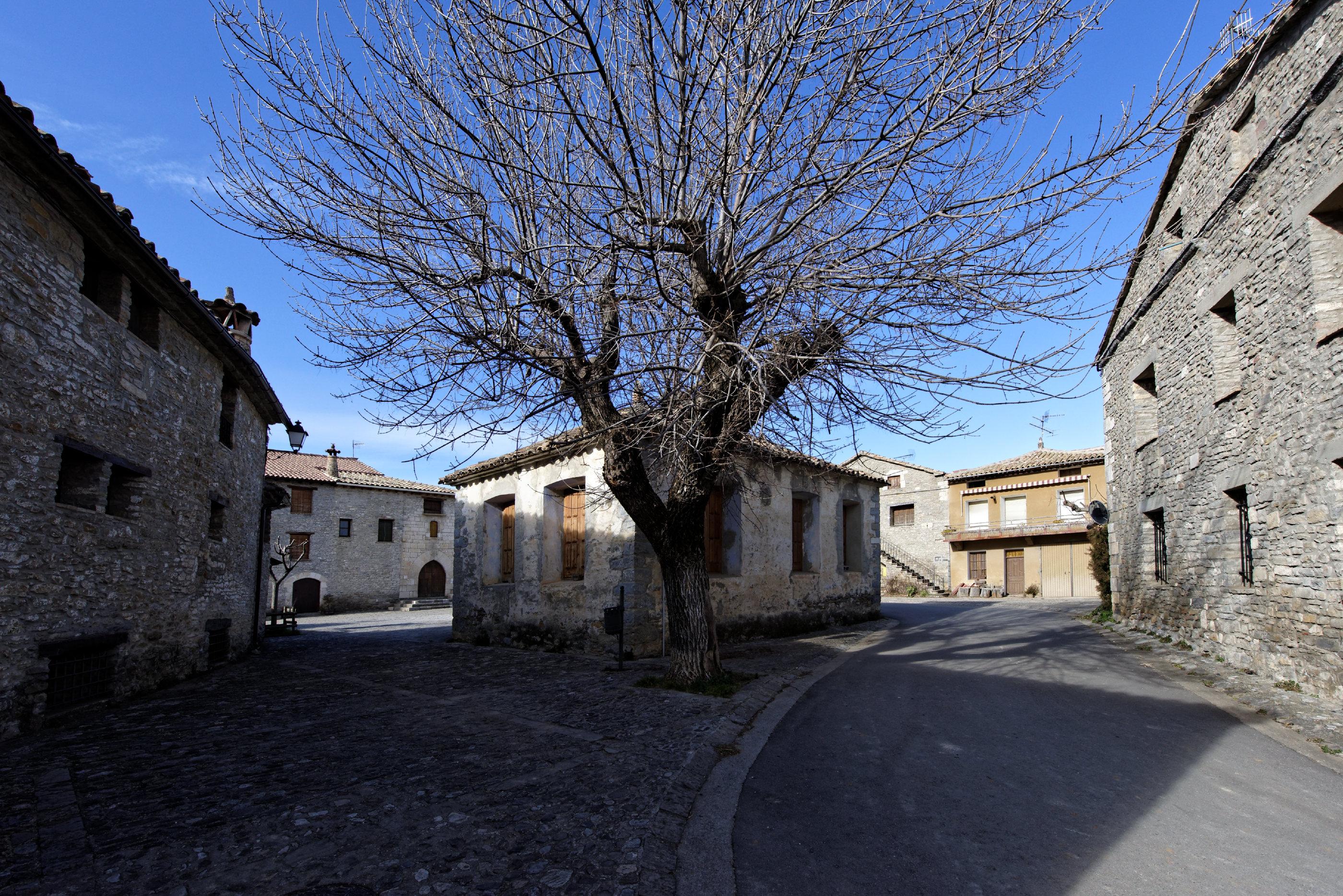 150127-Lecina (Biello Sobrarbe) (16)