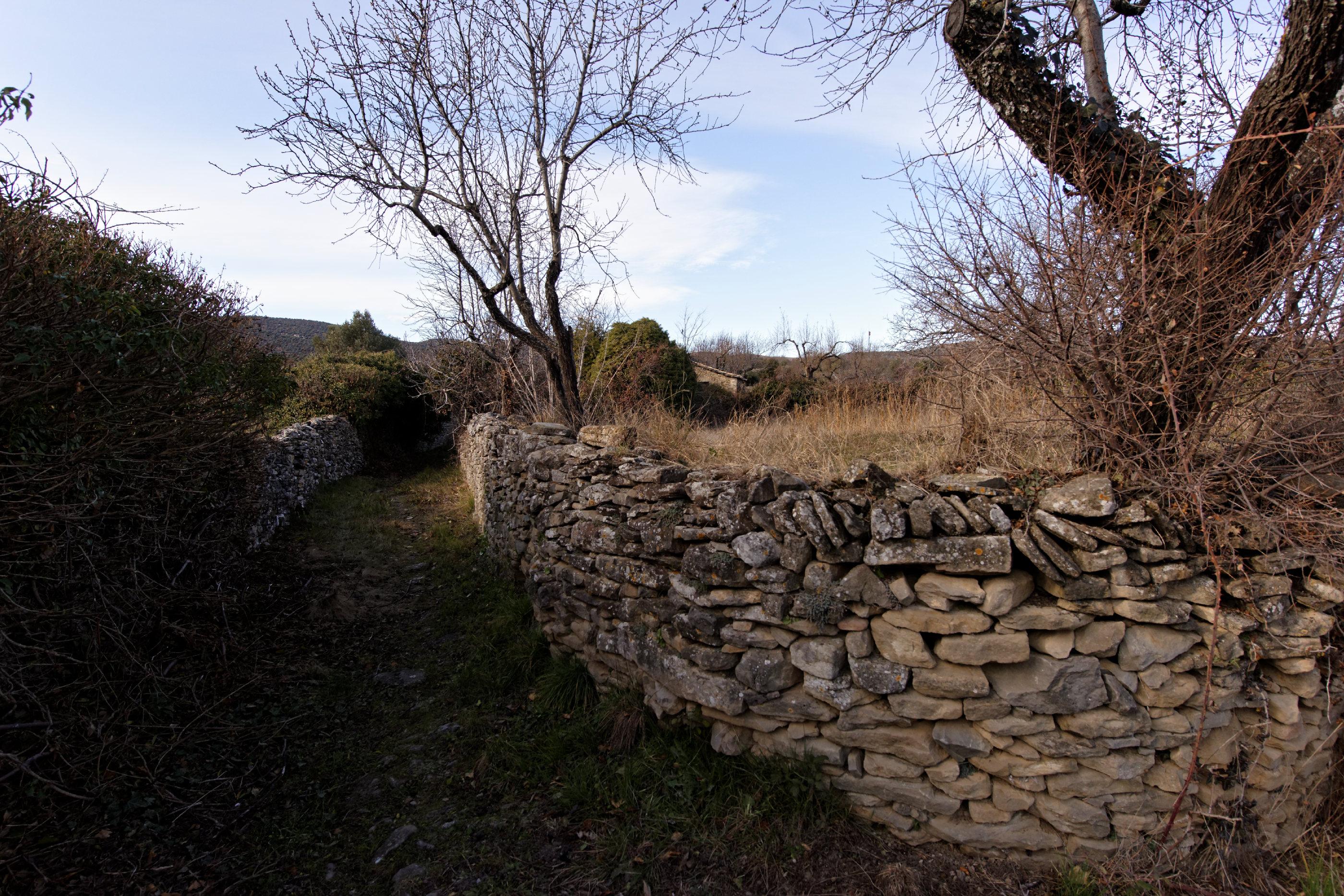 150127-Lecina (Biello Sobrarbe) (50)