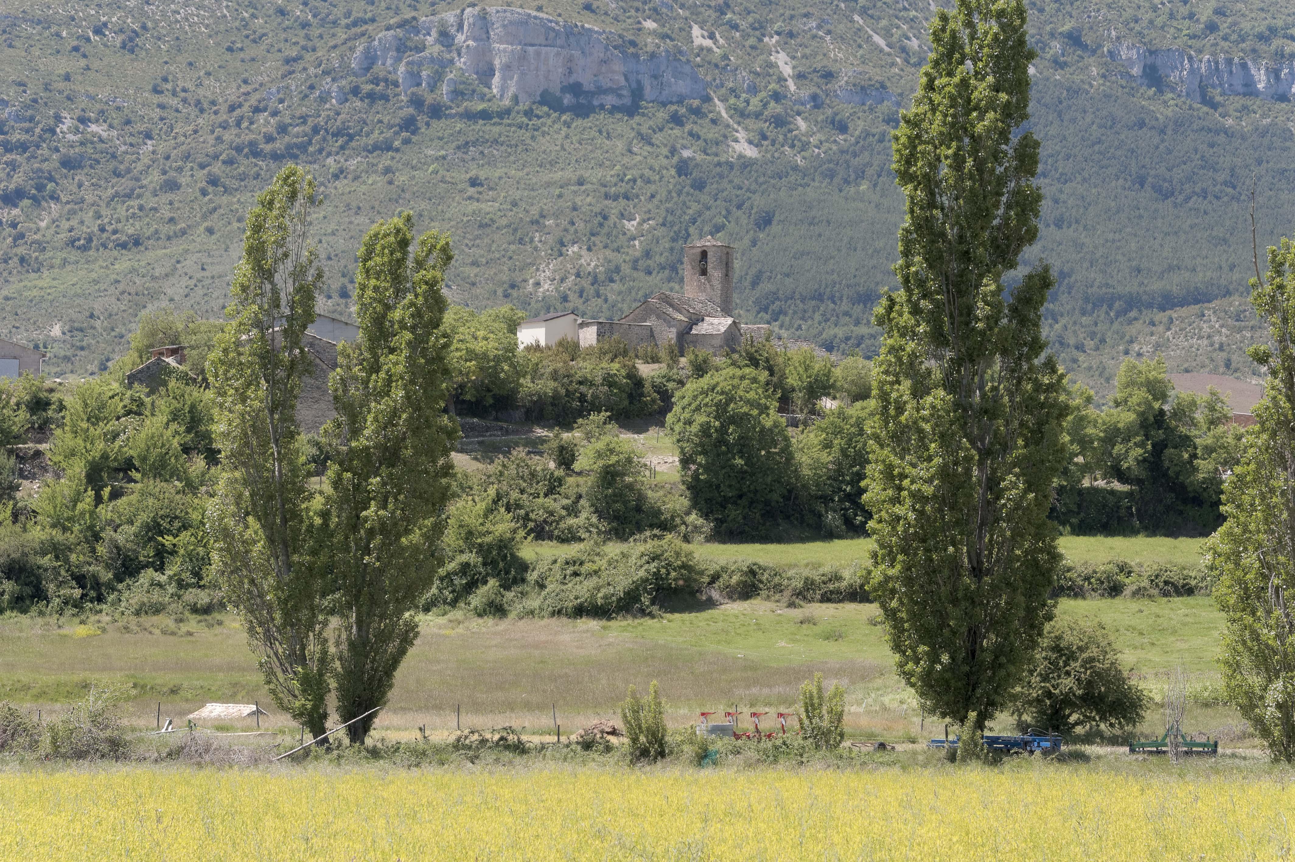 6769_Paules de Sarsa (Sobrarbe)