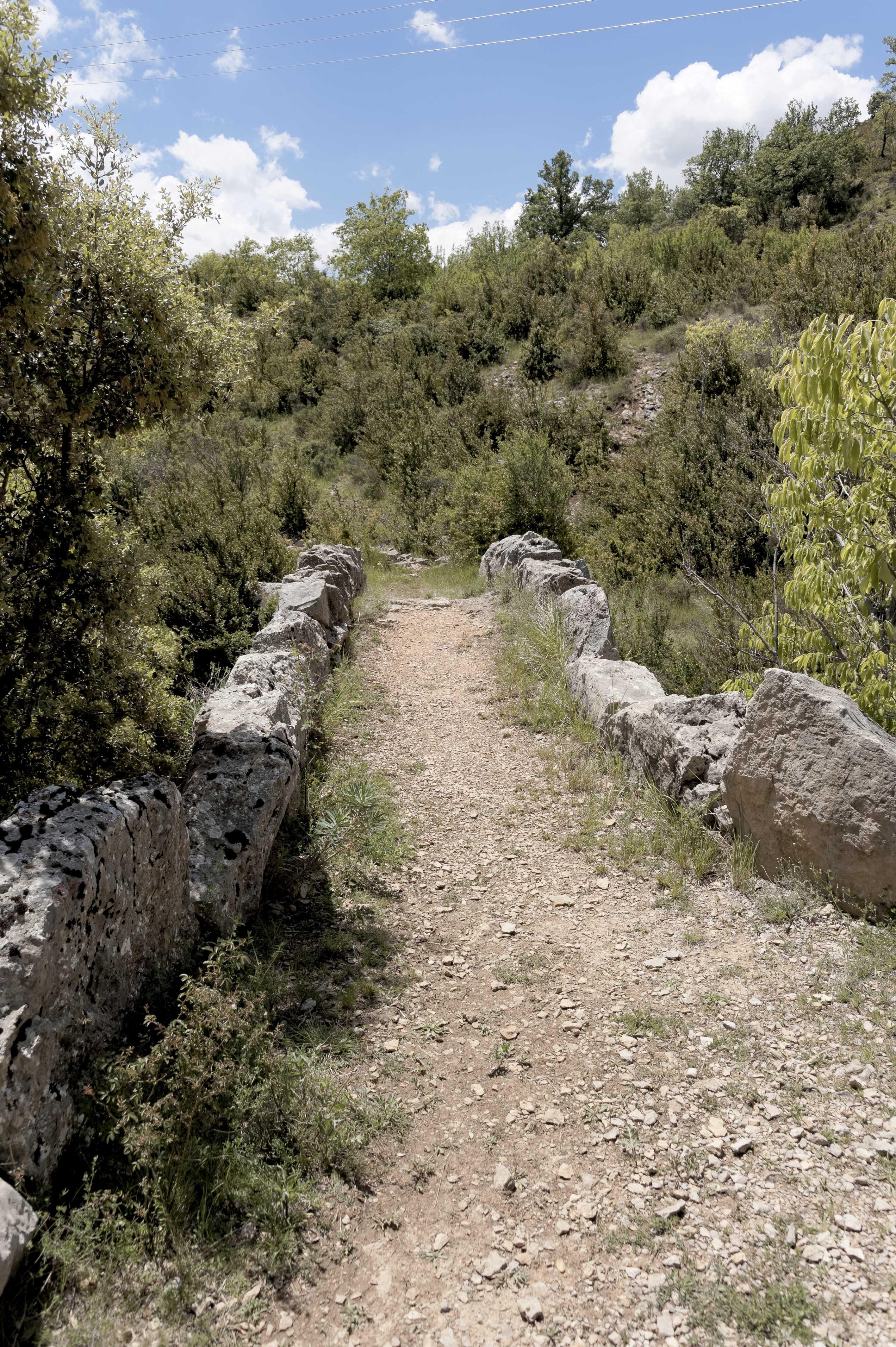 6792_Puente de Sarsa (Sobrarbe)