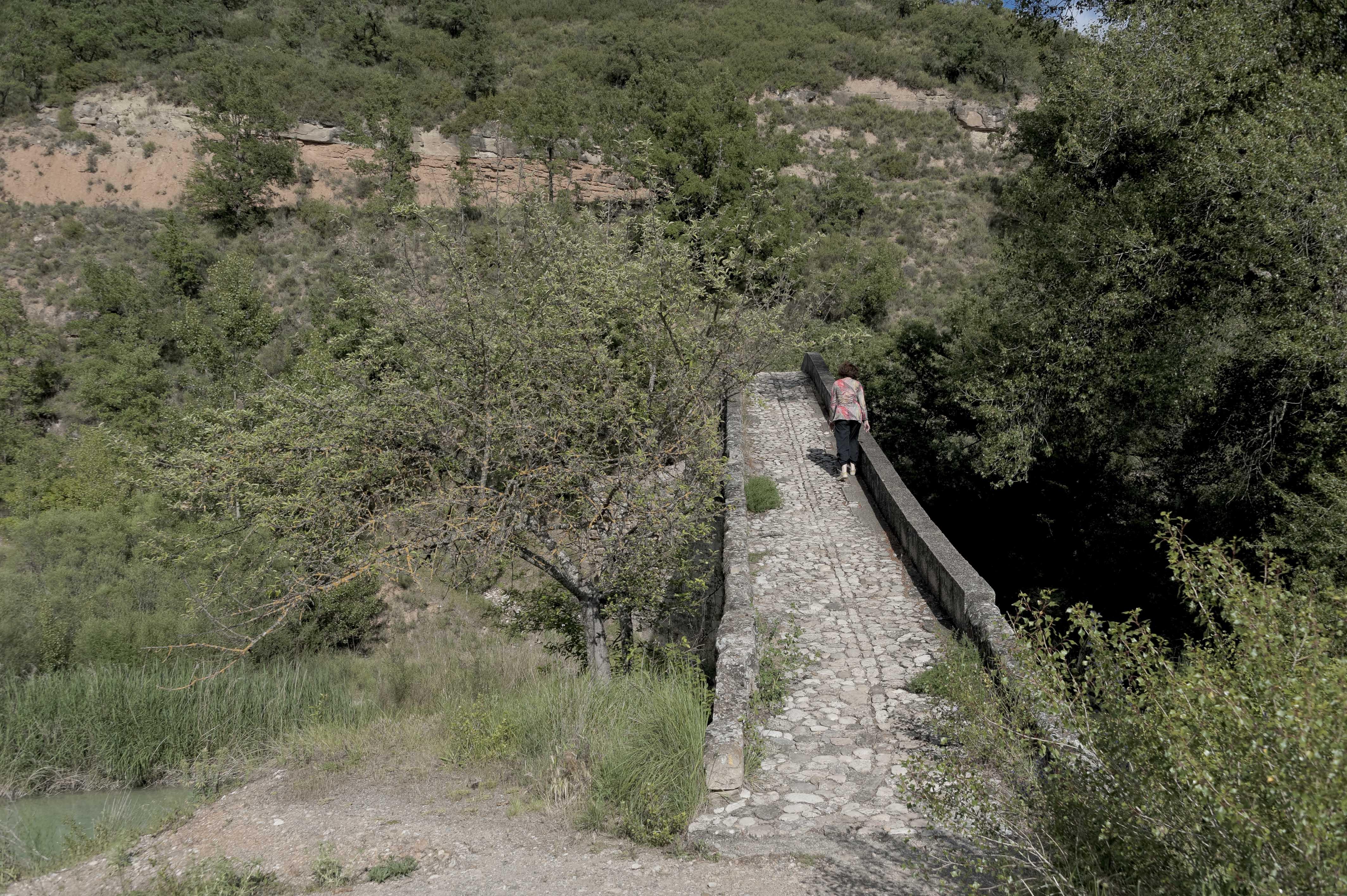 6928_Puente de Campanachal ou de la Albarda (Somontano)